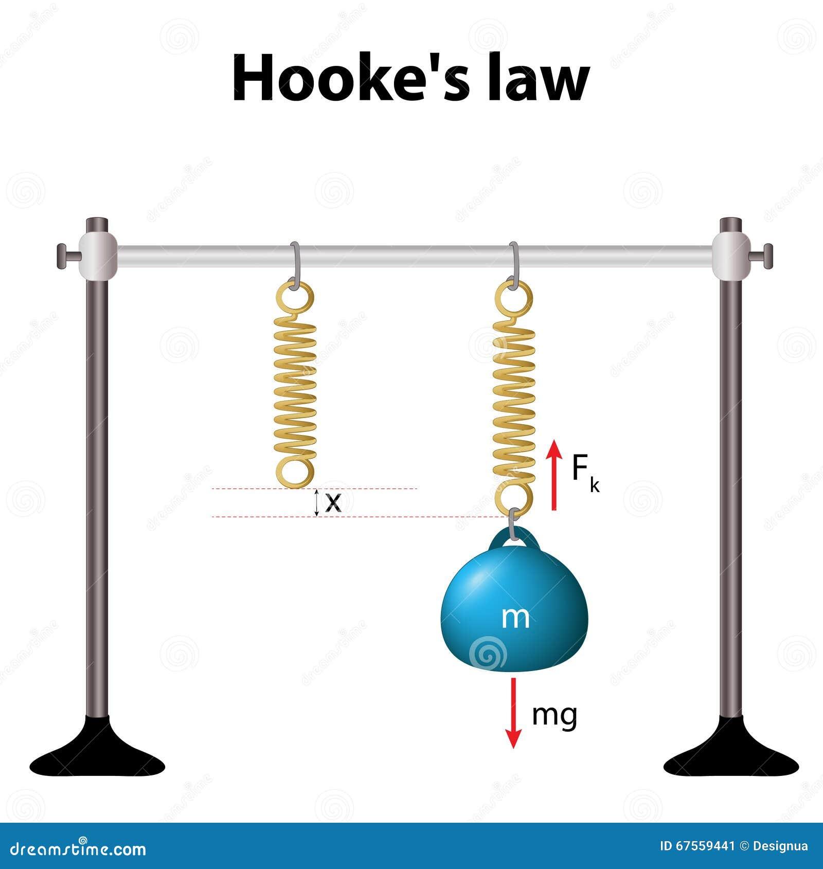 A lei de Hooke a força é proporcional à extensão