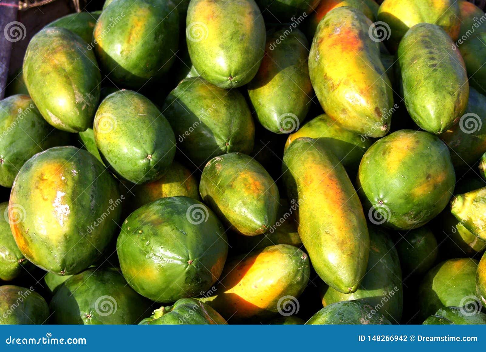 Leitoso ou papaia