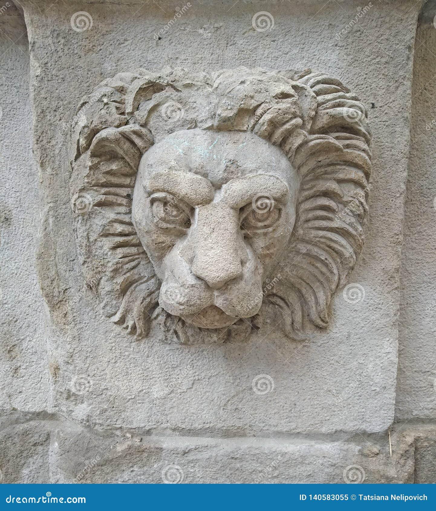 Lejonhuvud på en byggande vägg i lviv