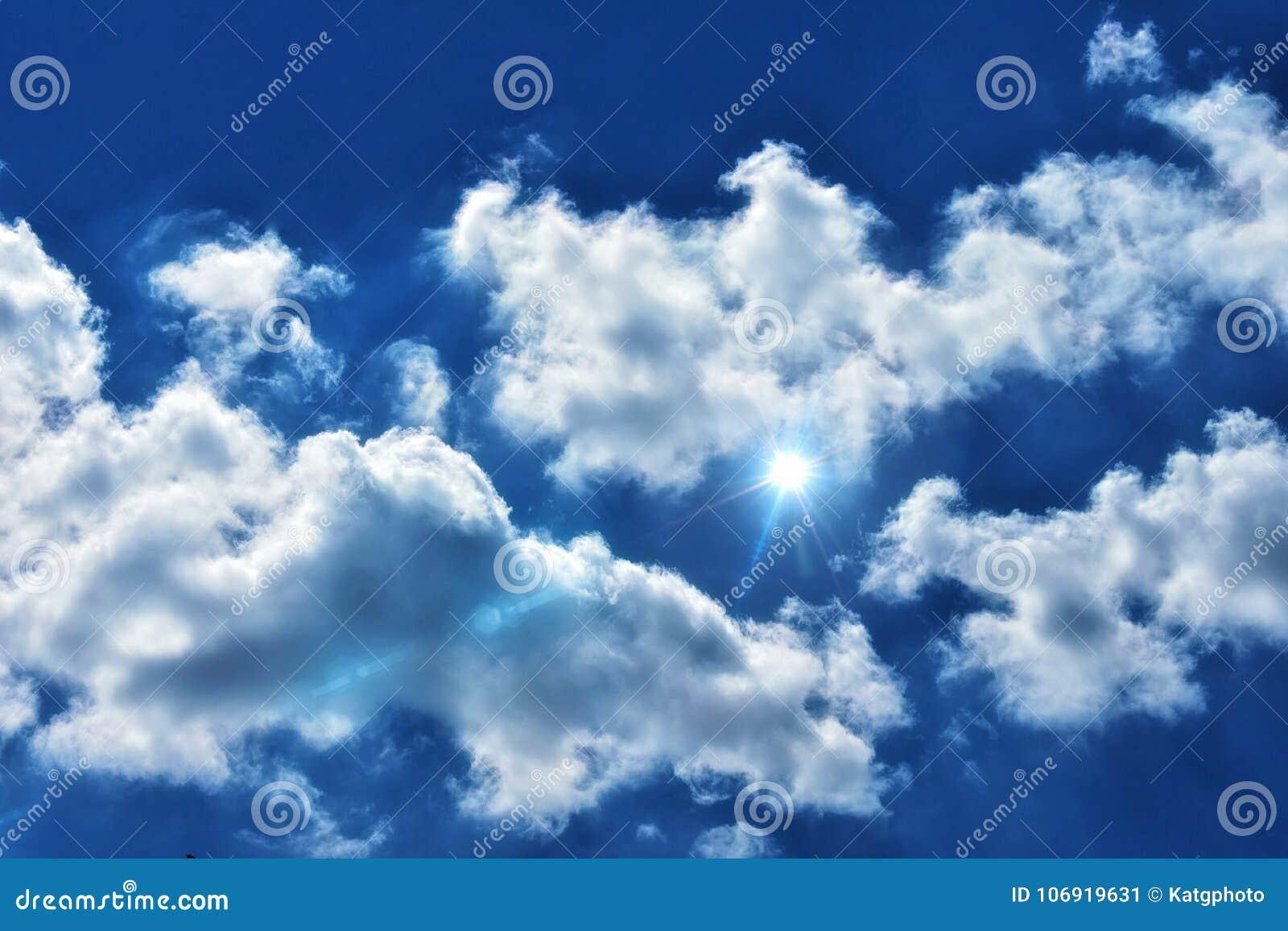 Lekki raca W Chmurnym niebieskim niebie