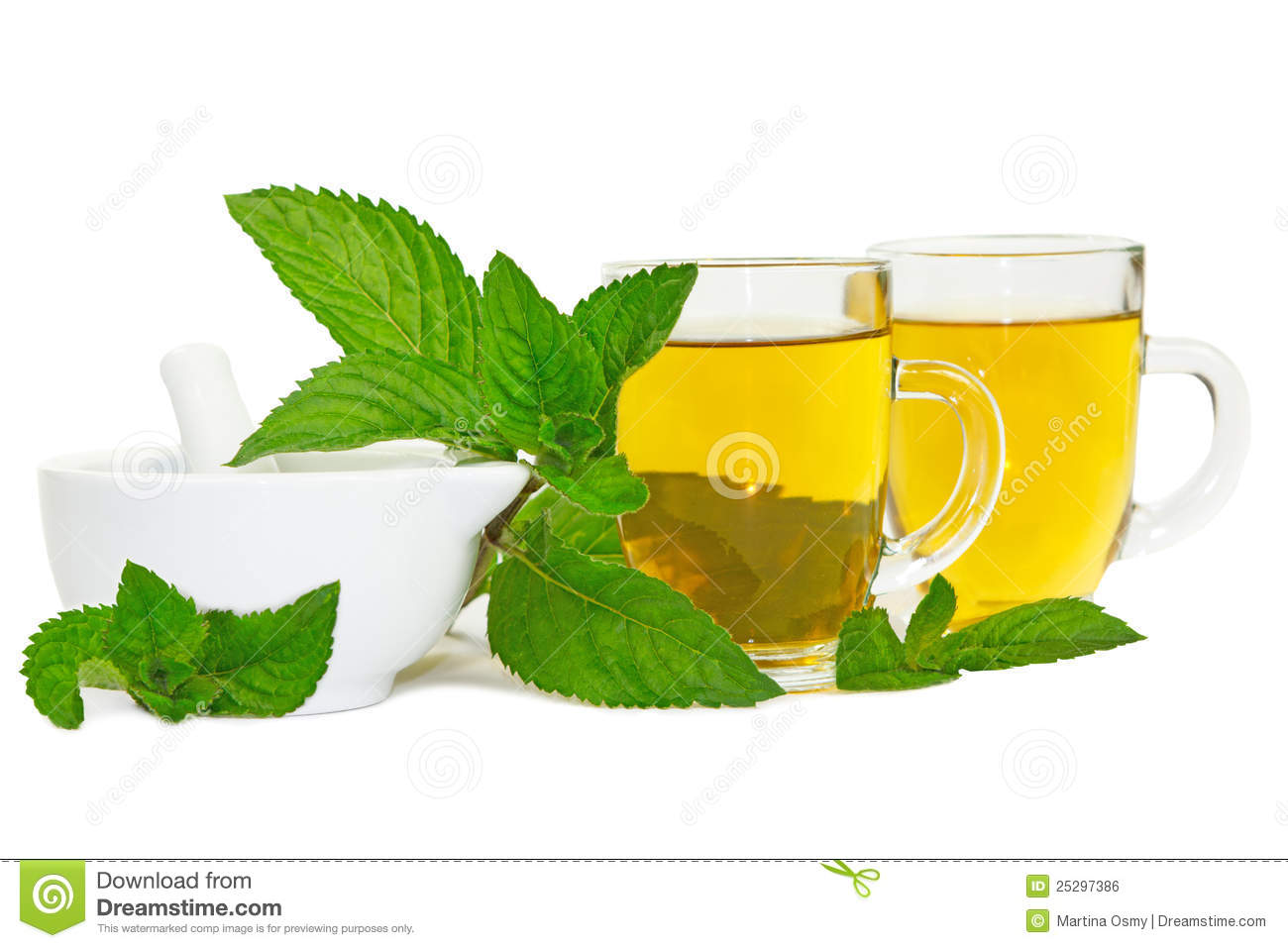 ... lemon balm leaves used to brew healthy refreshing mint or lemon balm