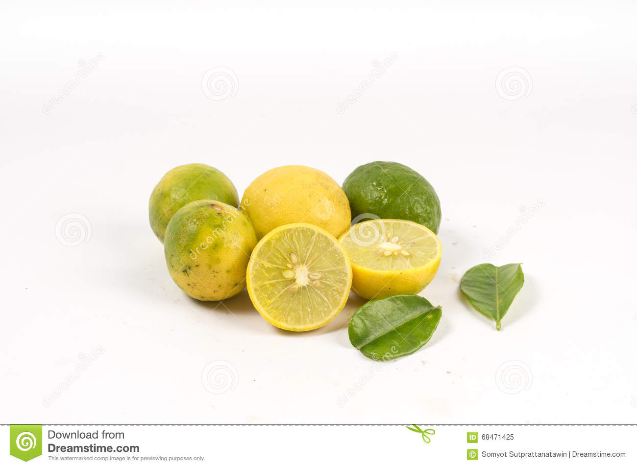 Lemon cut with leaves