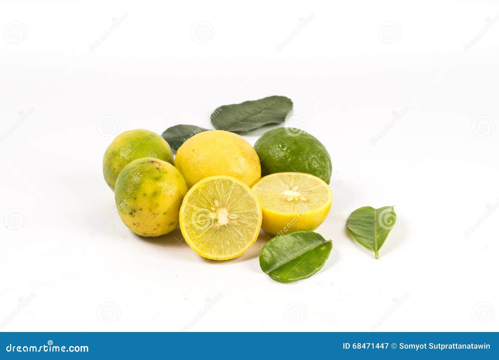 Lemon cut with leaves