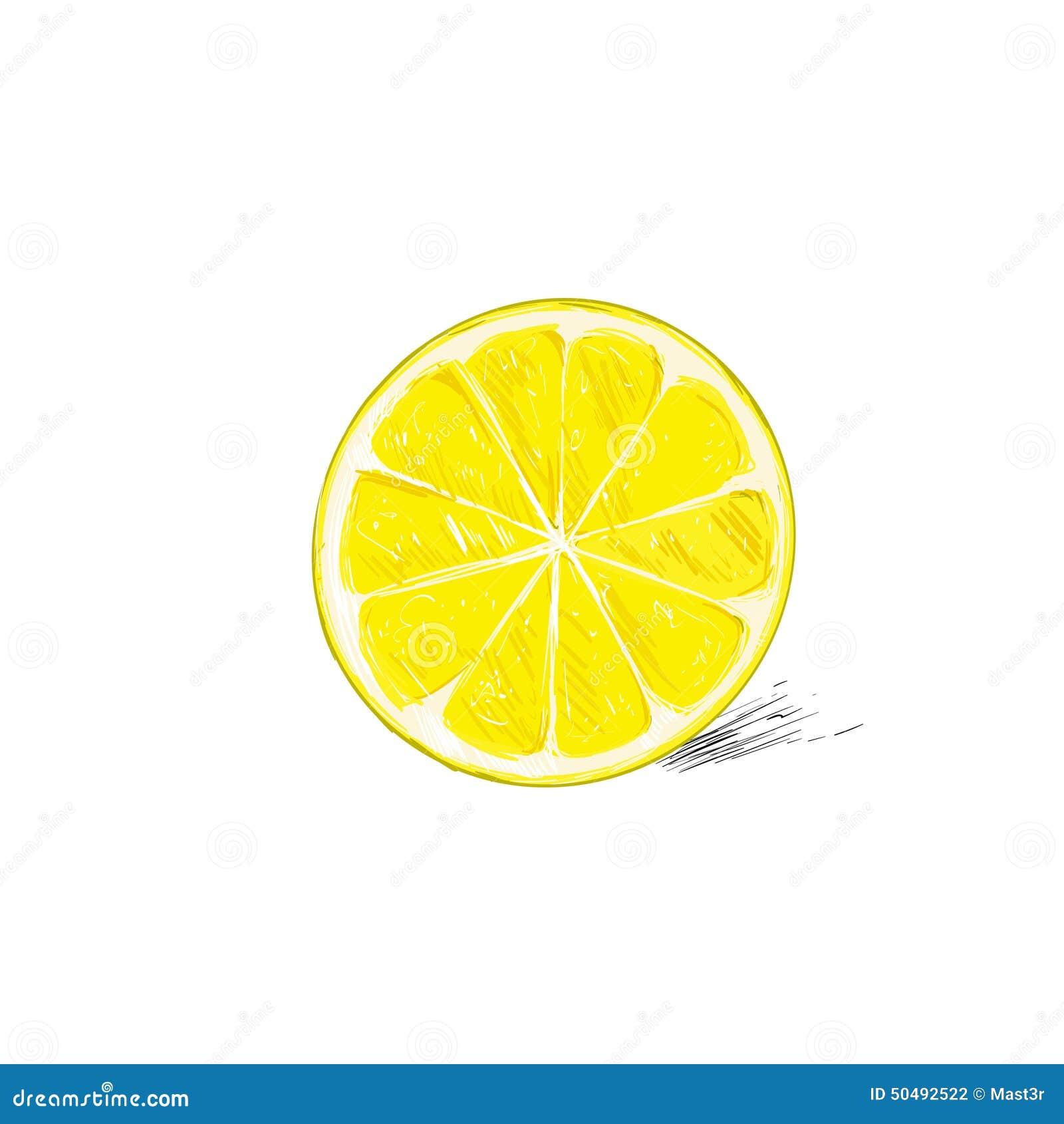 lemon half cut circle citrus fruit color sketch stock vector