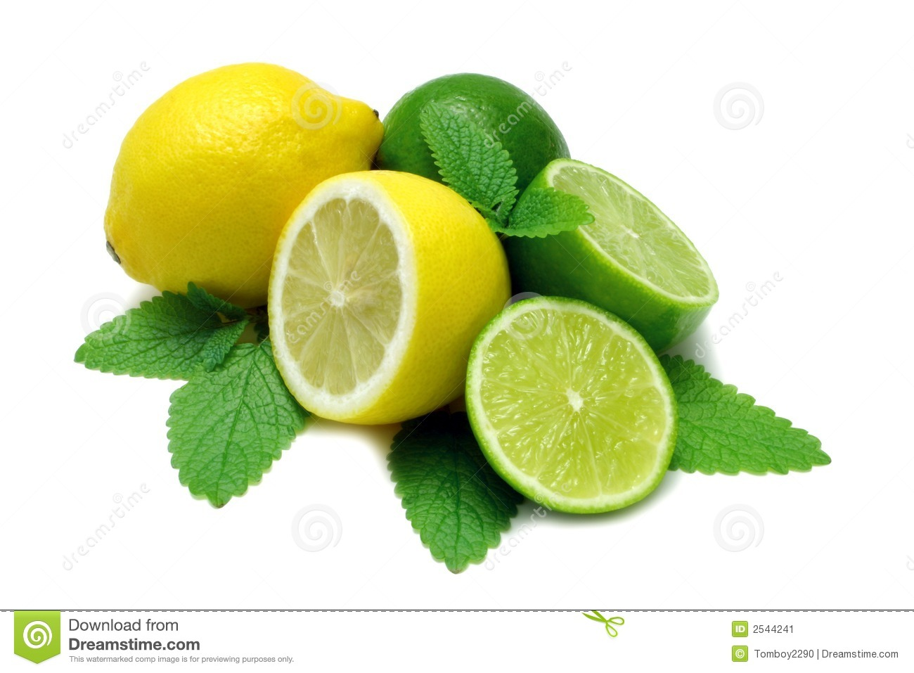 Lemon And Limes Stock Image - Image: 2544241