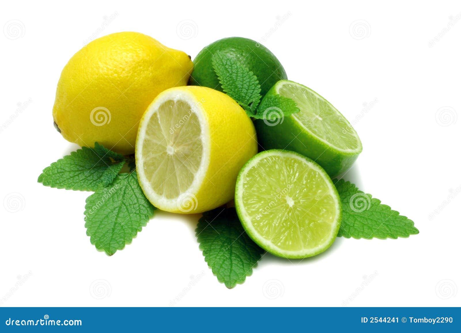 lemon and limes stock image image 2544241 watercolor green leaf clip art green leaf clip art border