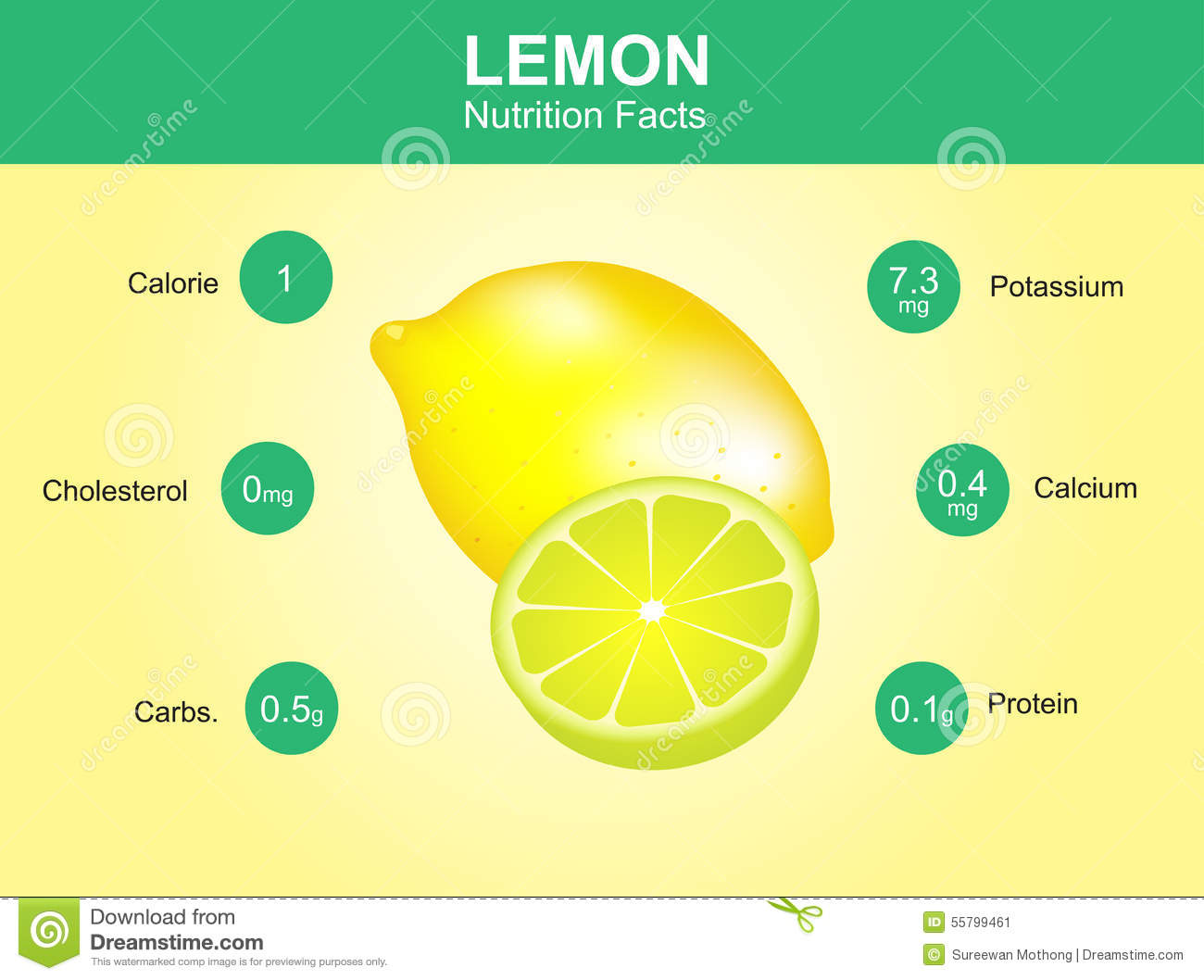 Diagram Of Lemon Fruit Car Wiring Diagrams Explained Battery Vegetable Nutrition Facts With Information Vector Rh Dreamstime Com Cartoon
