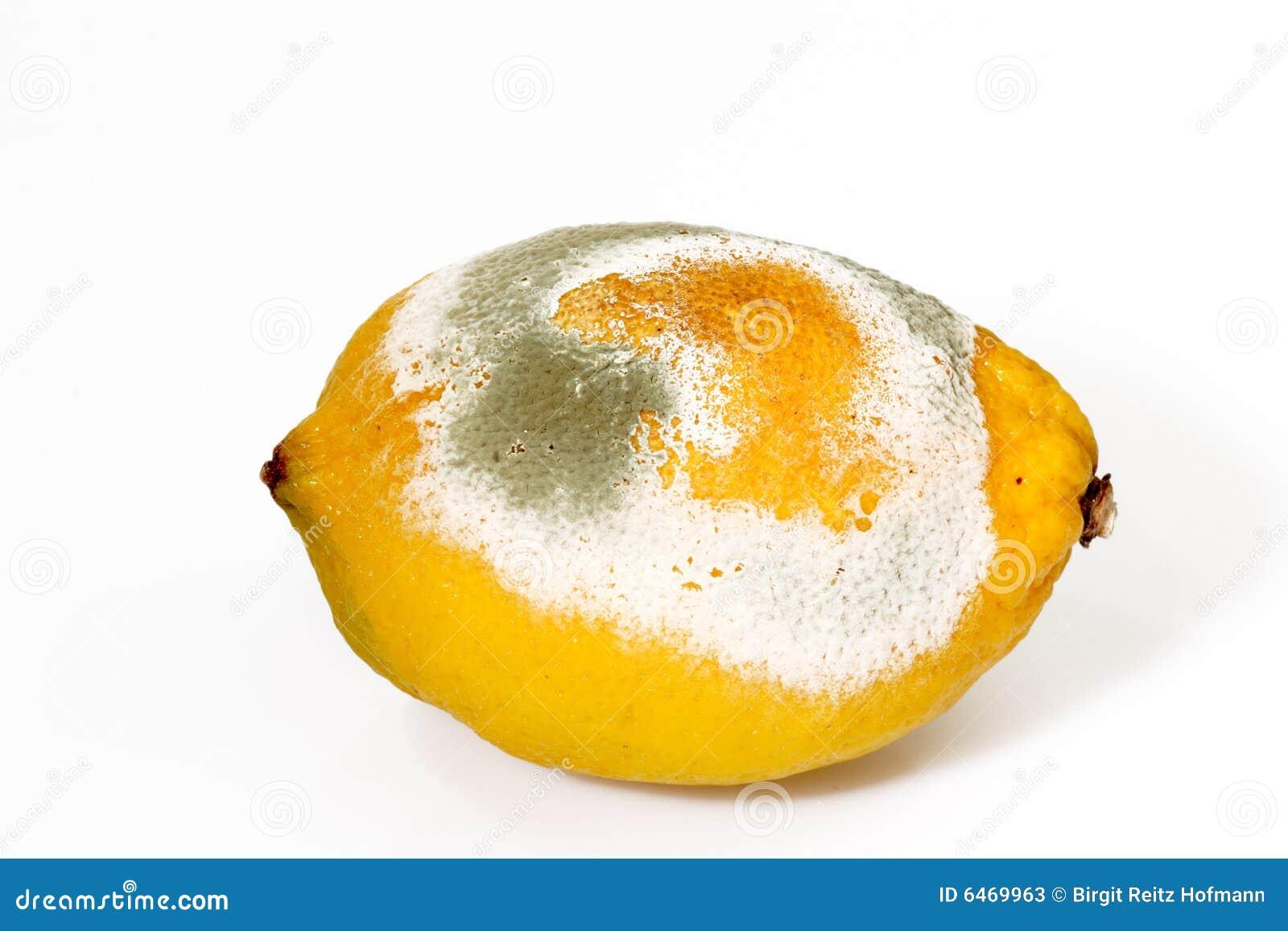 Lemon pleśniejąca