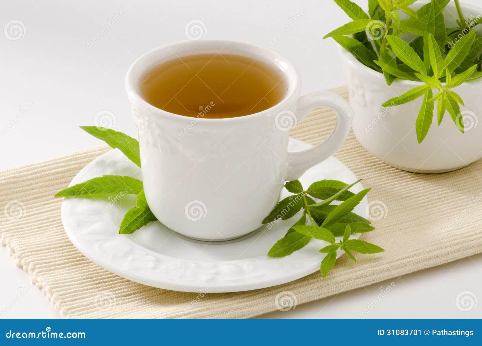 Lemon verbena Herbal Tea in a cup. Aloysia citriodora. Naturopathy ...