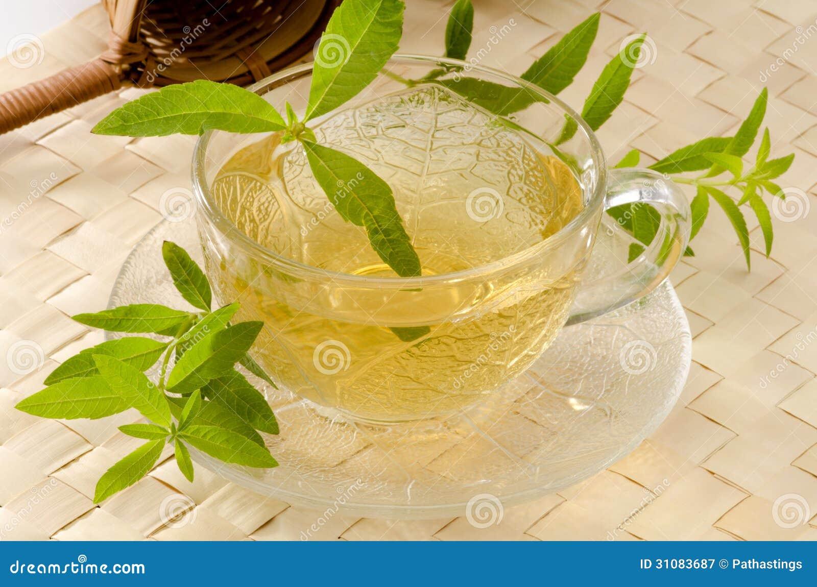 Lemon Verbena Herbal Tea Royalty Free Stock Photography - Image ...