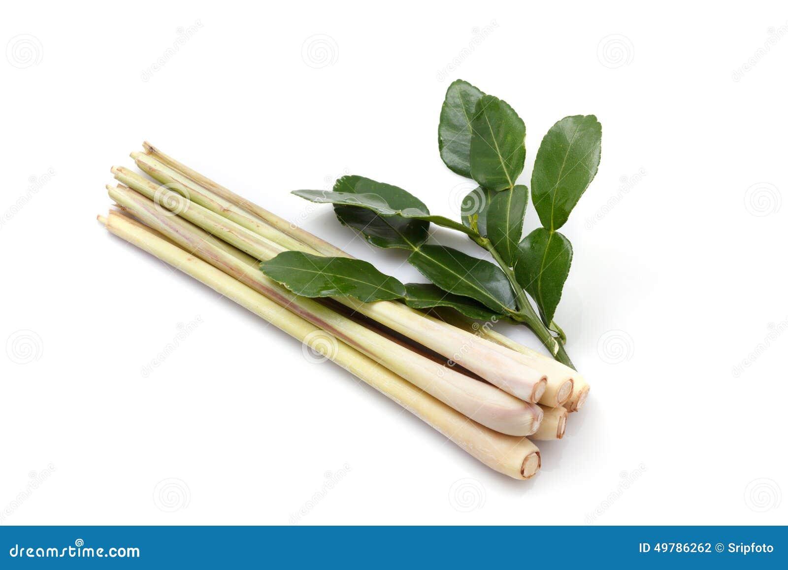 ... two whole kaffir limes kaffir lime leaves sliced lime lemon grass and
