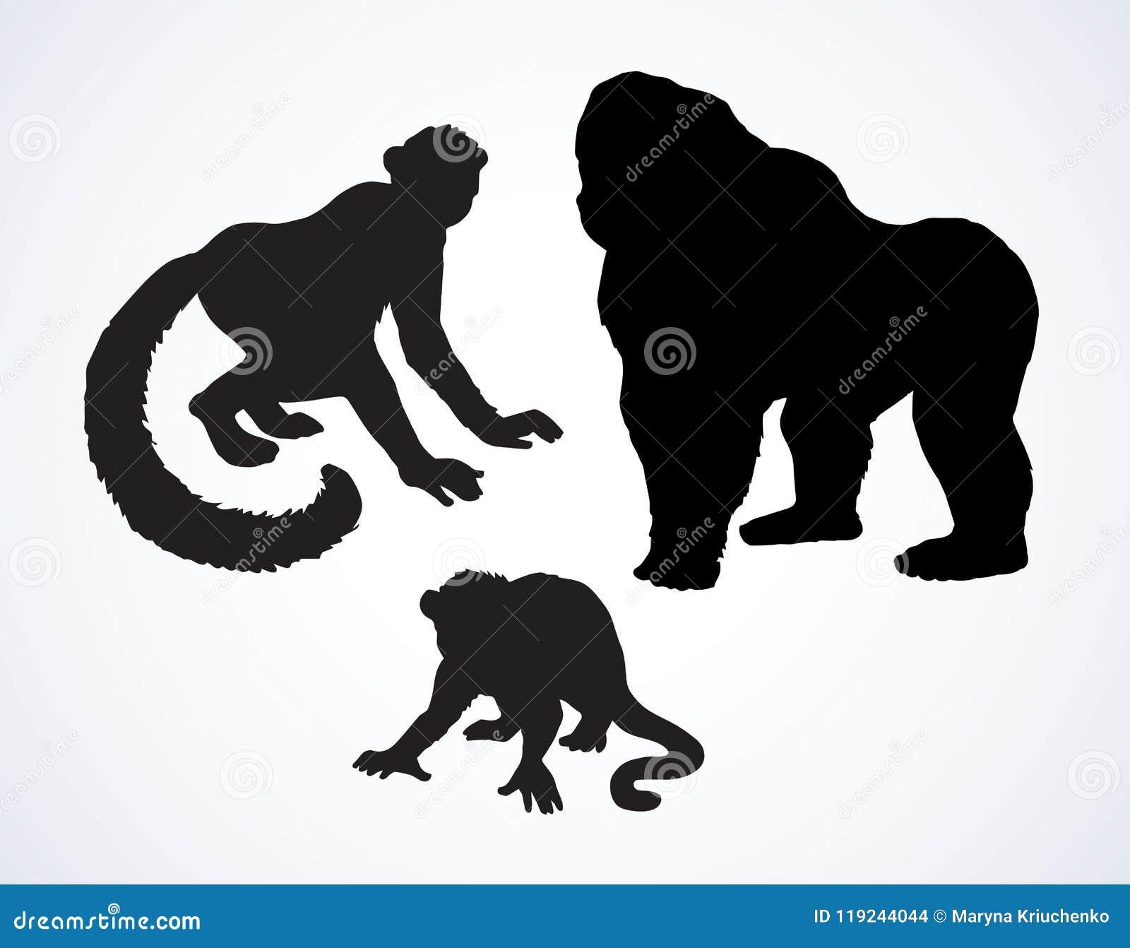 Lemur również zwrócić corel ilustracji wektora