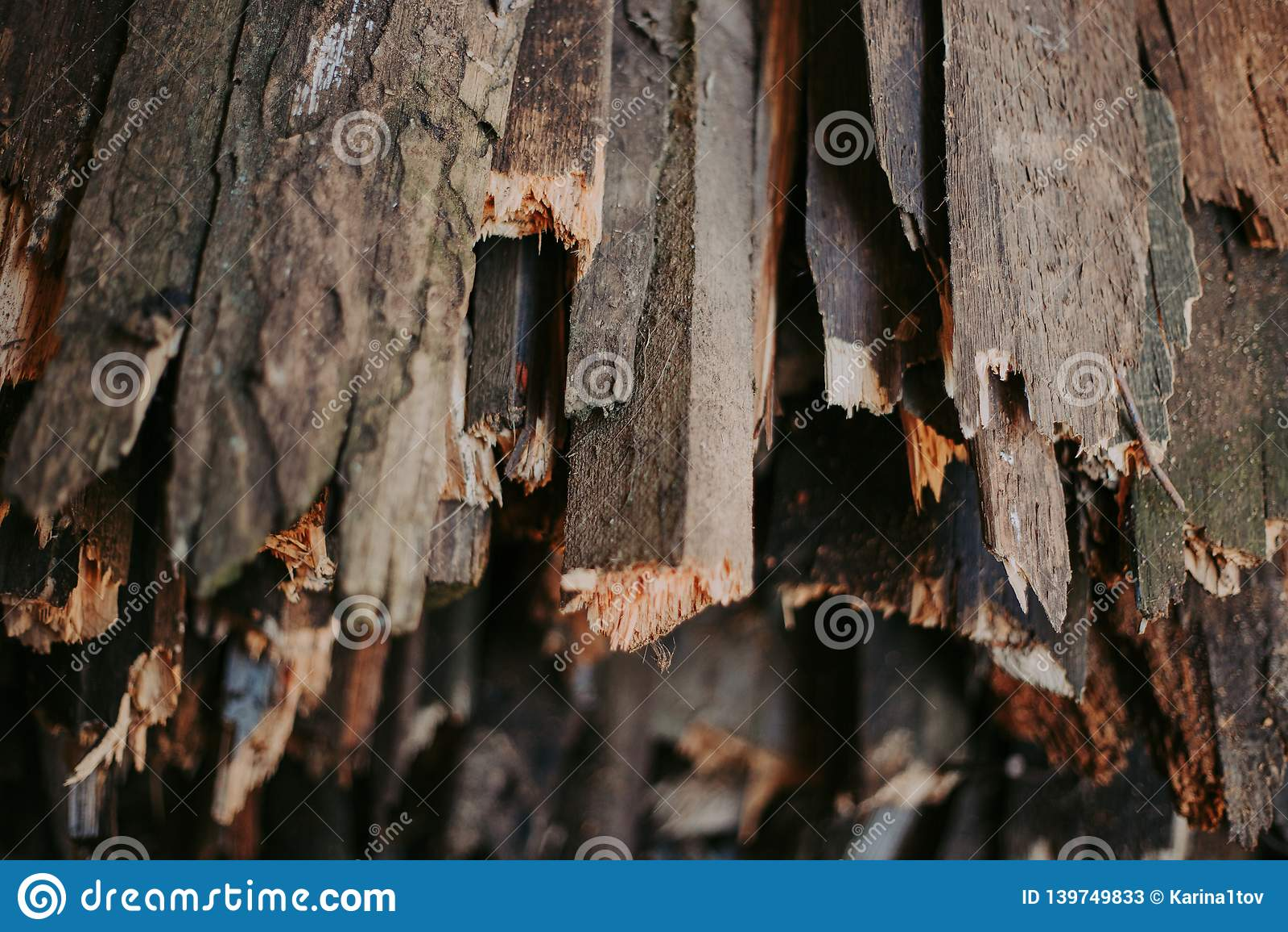 Lenha, para o fogo, empilhada em uma pilha lisa Lenha da parede
