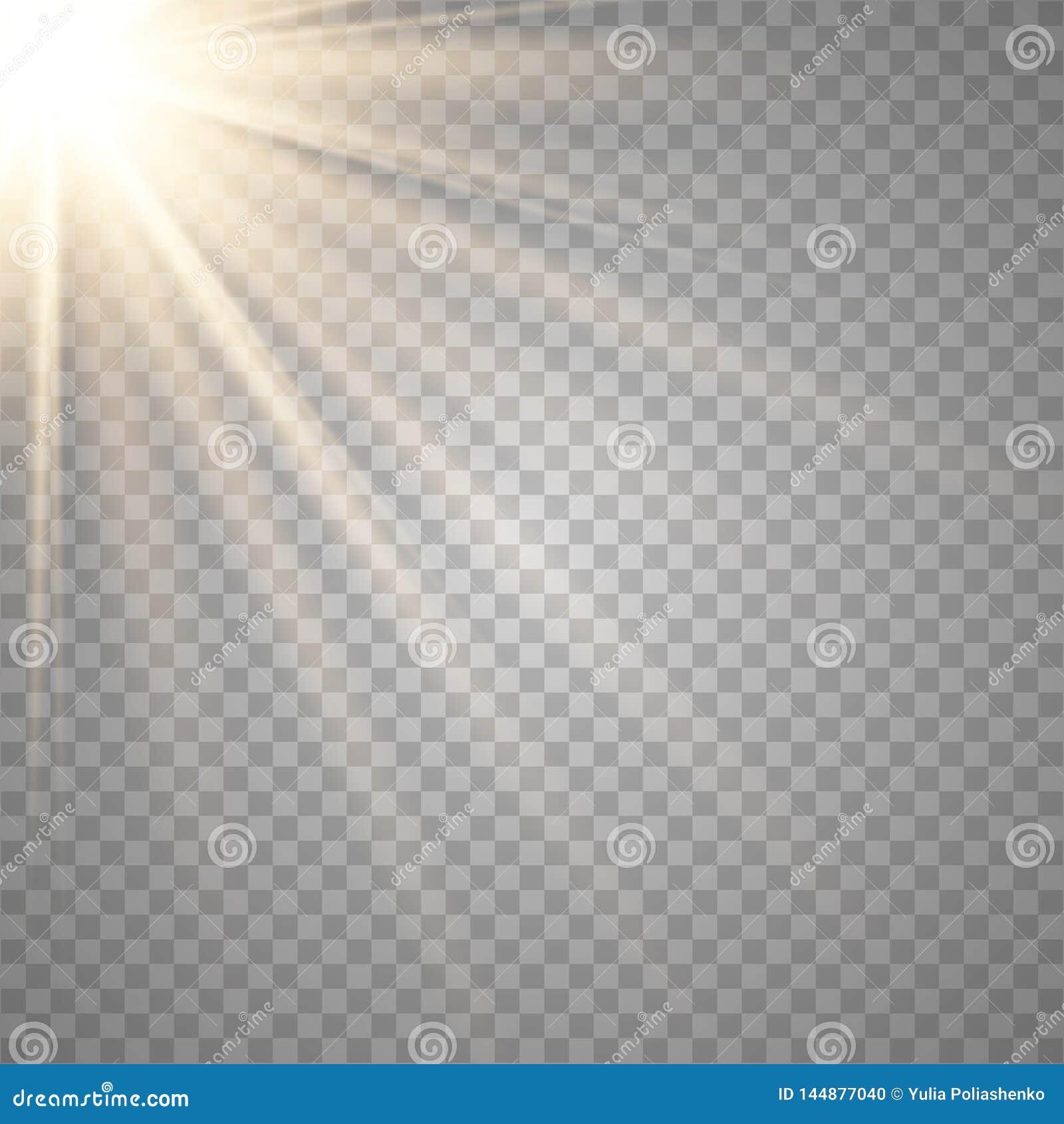 Lente trasparente dello speciale di luce solare di vettore