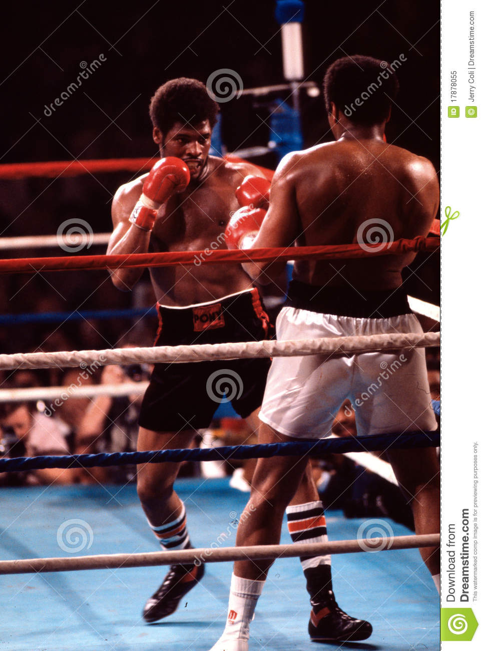 Leon Spinks Heavyweight boxer