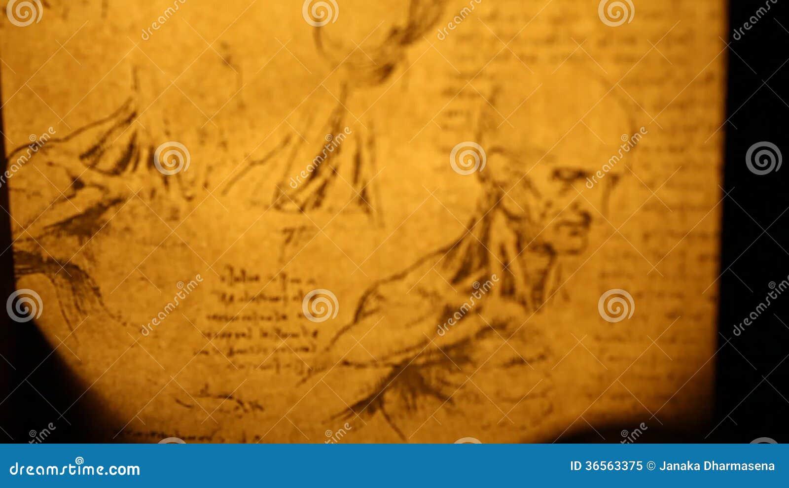 Leonardo da Vinci-Anatomie stock video footage. Bild von anatomie ...