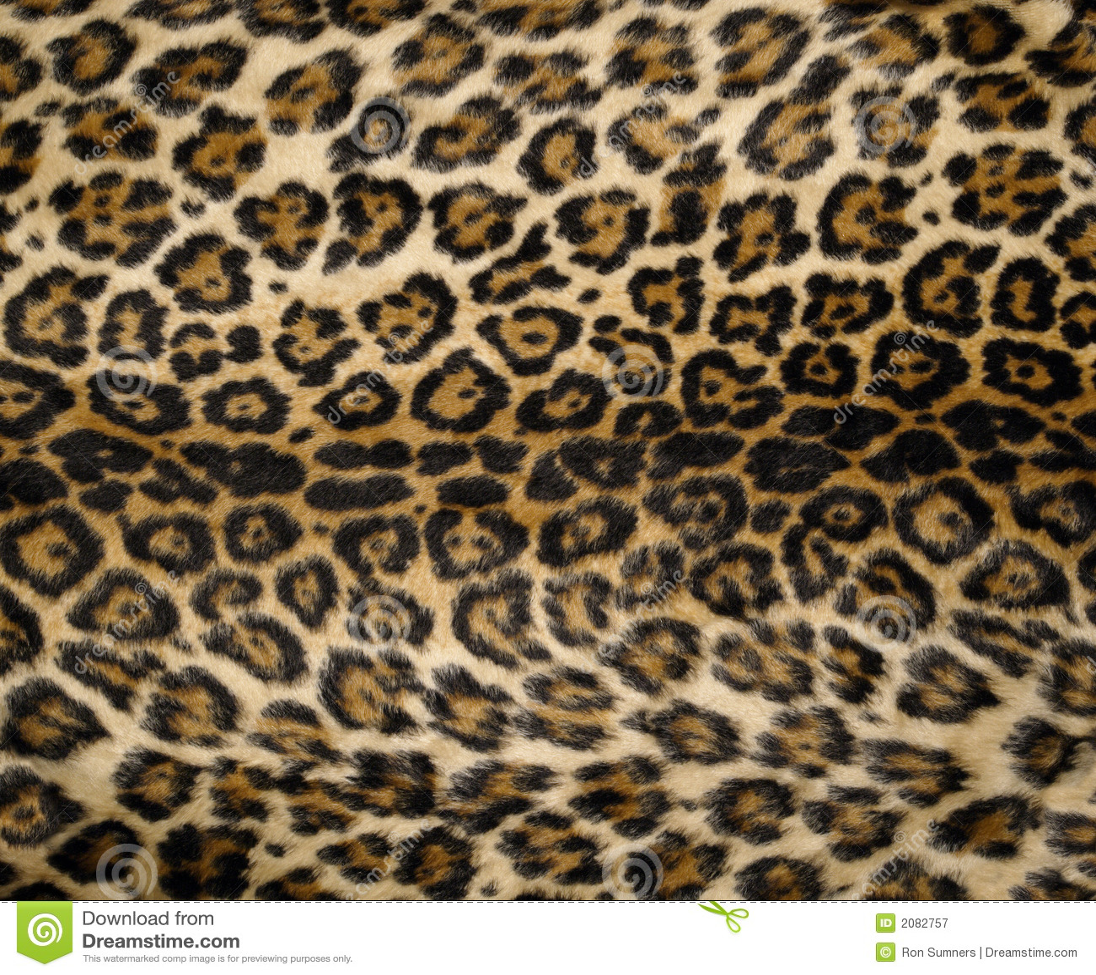 leopard pattern 2 print - photo #21