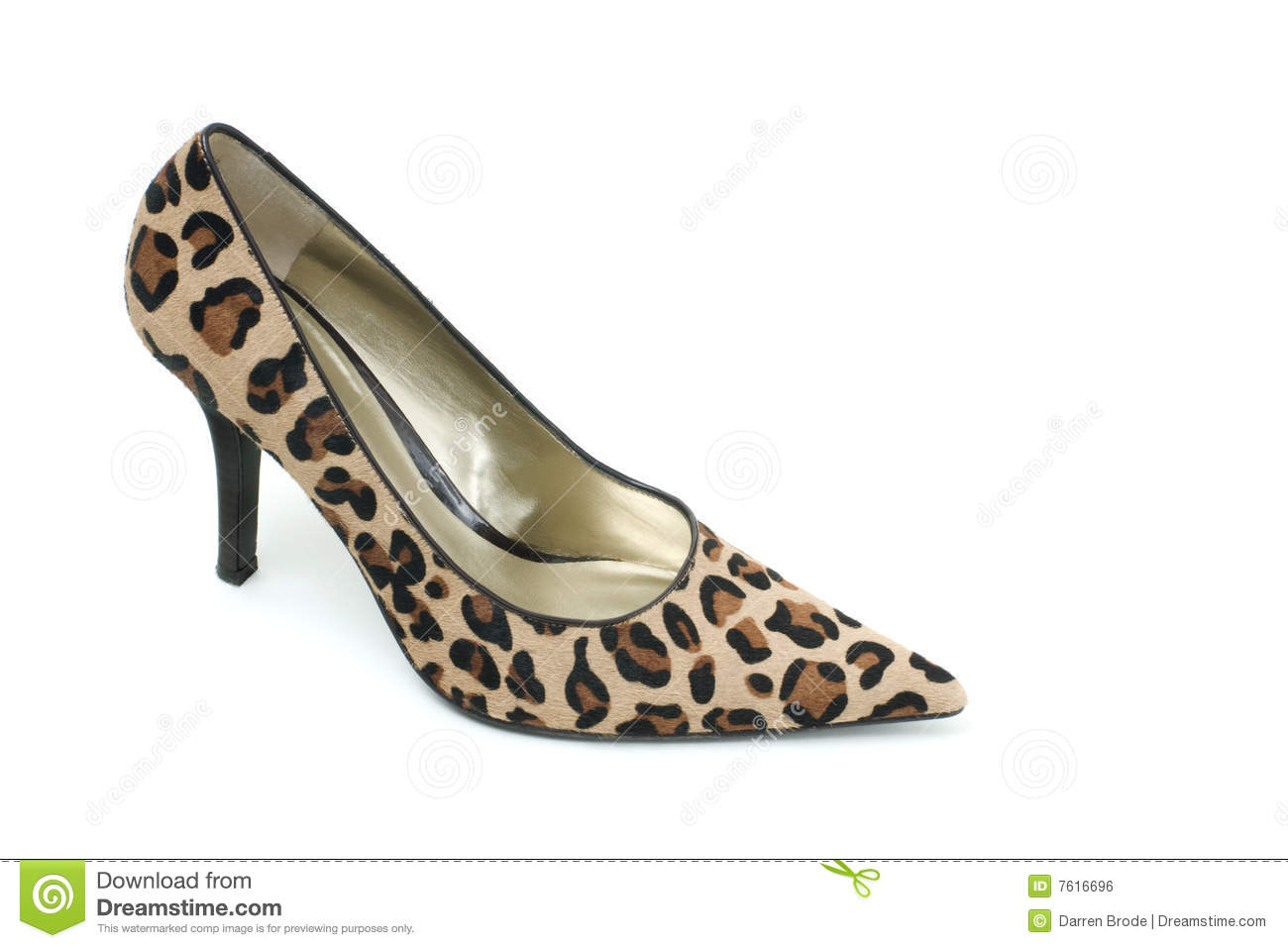 Leopard Print High Heel Shoe Royalty Free Stock Image - Image: 7616696