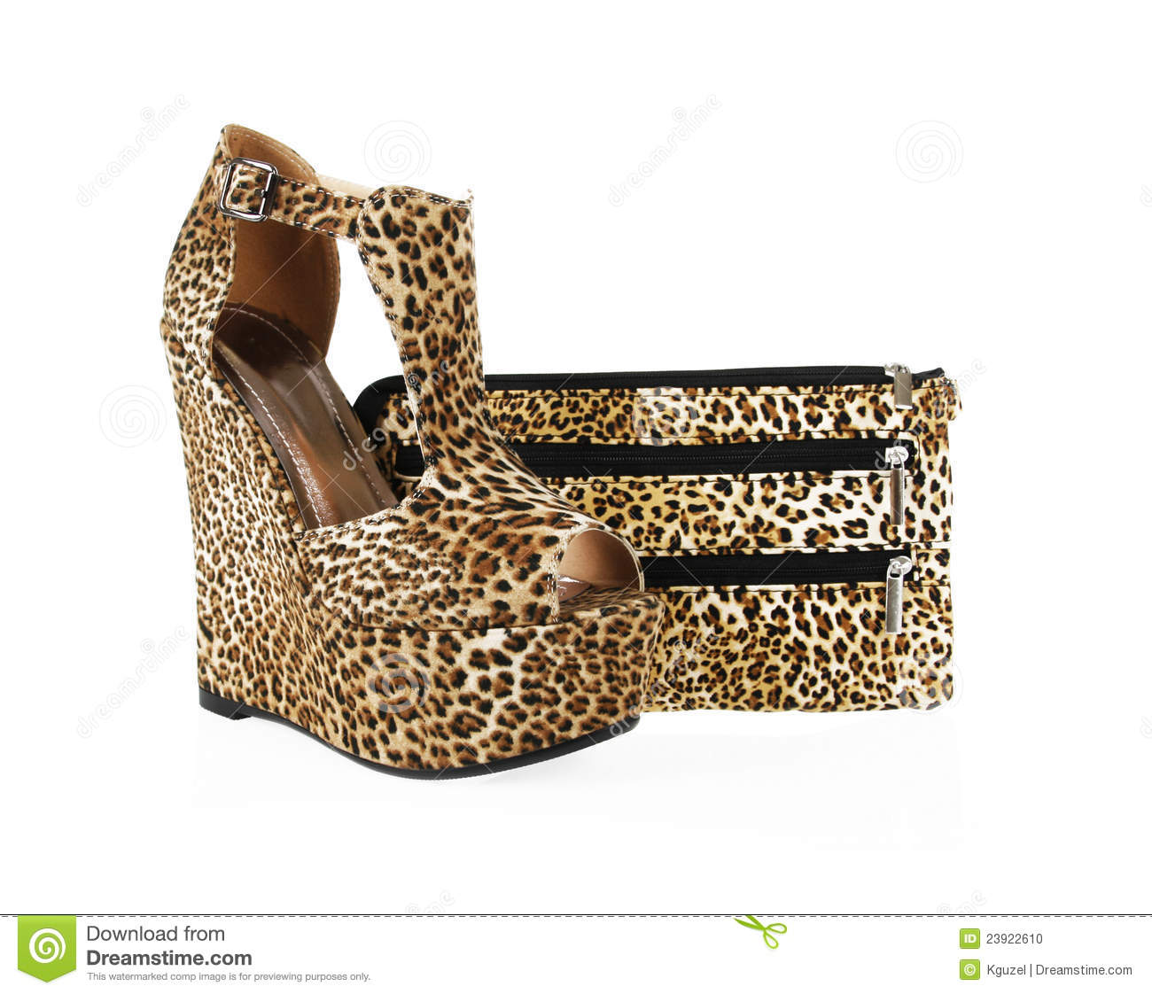 Leopard Print Shoes And Purse Stock
