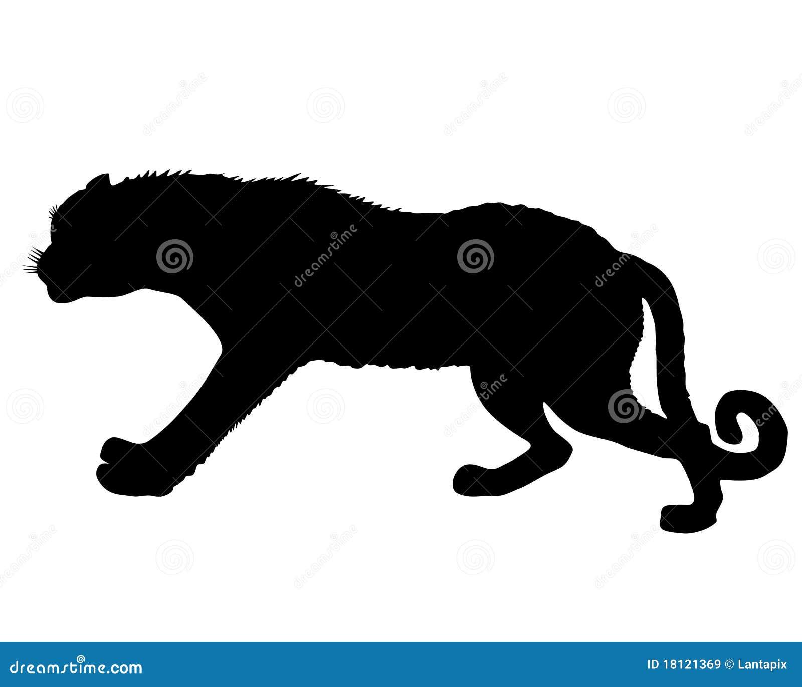 Leopard silhoue...