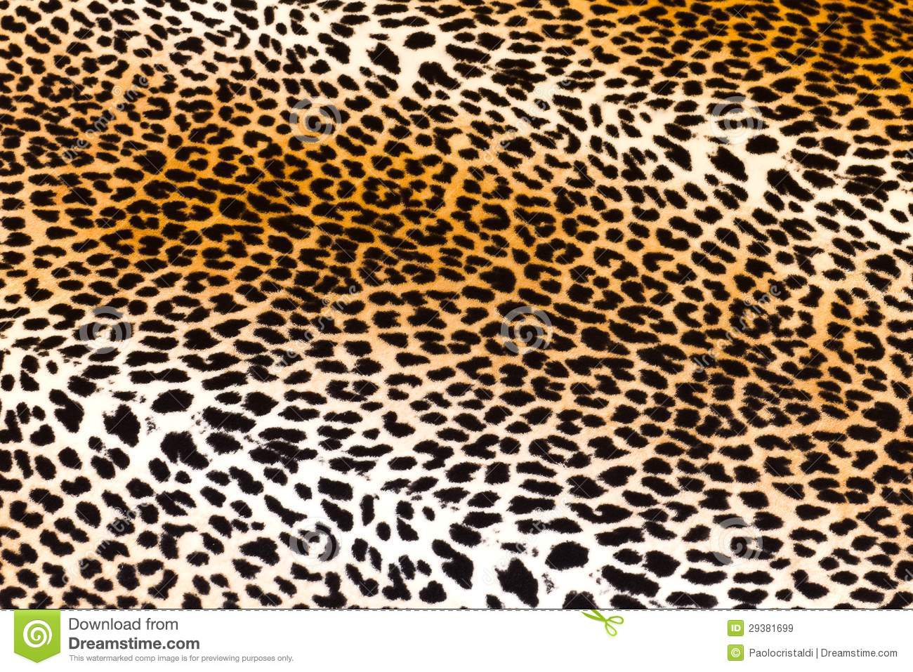 Leopard Skin Royalty Free Stock Images - Image: 29381699