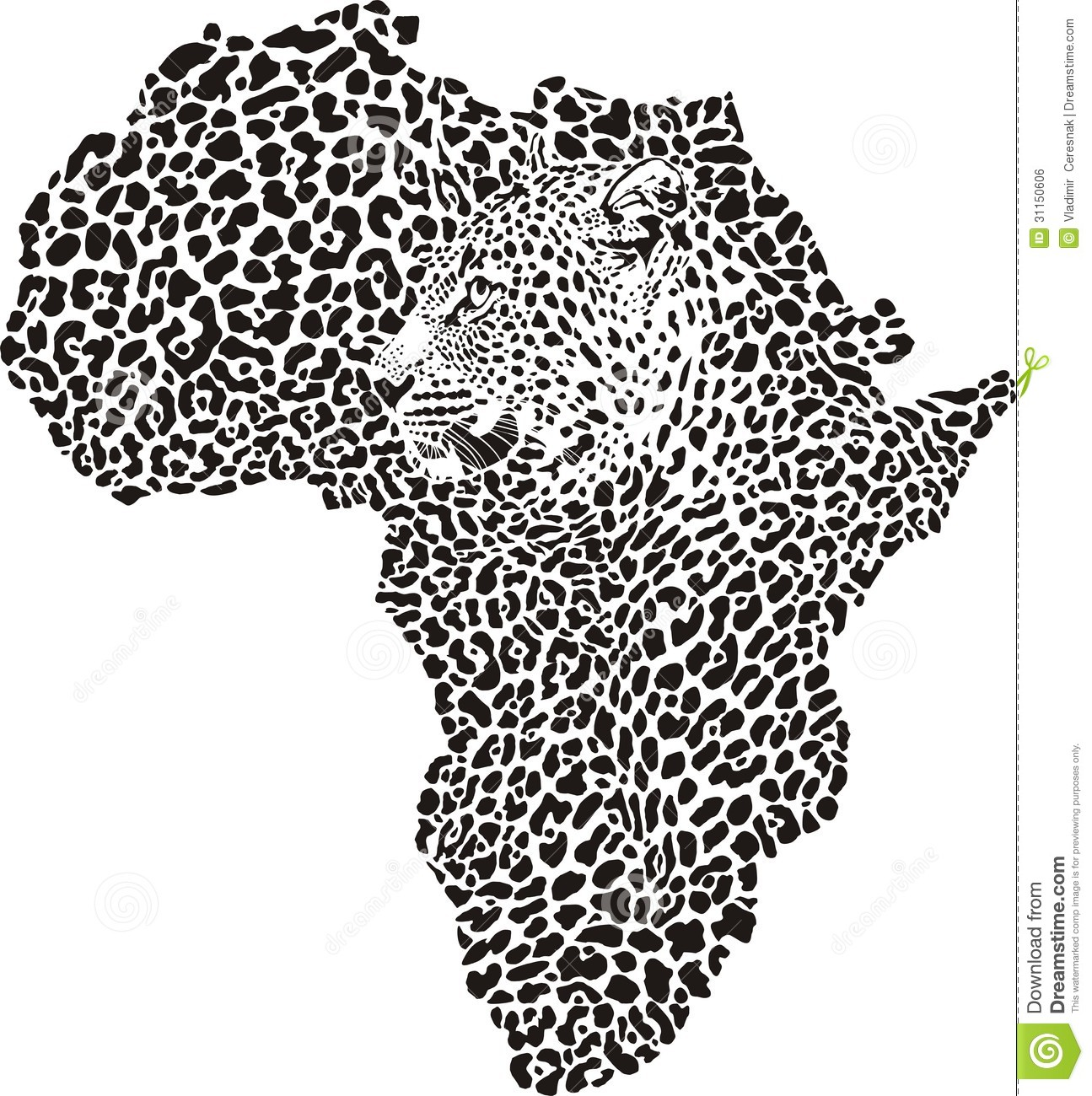 Leopard Skin And Head In Silhouette Africa Royalty Free Stock Image