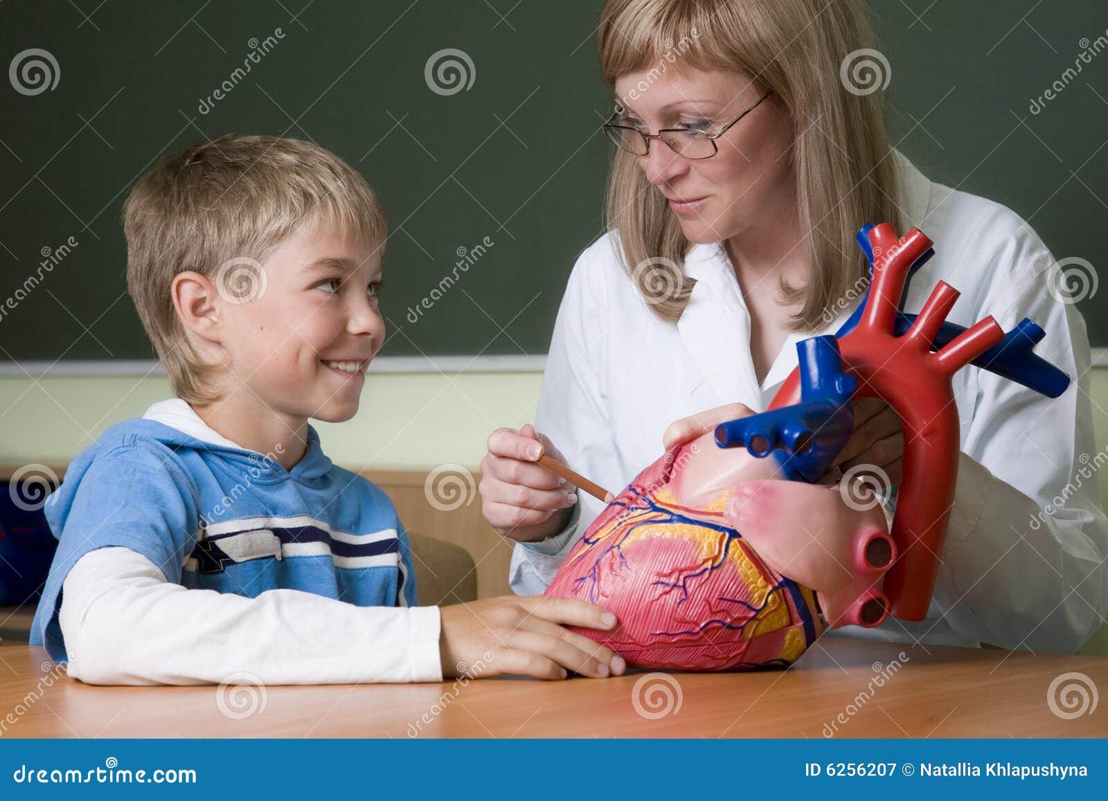 Leraar en schooljongen met hart