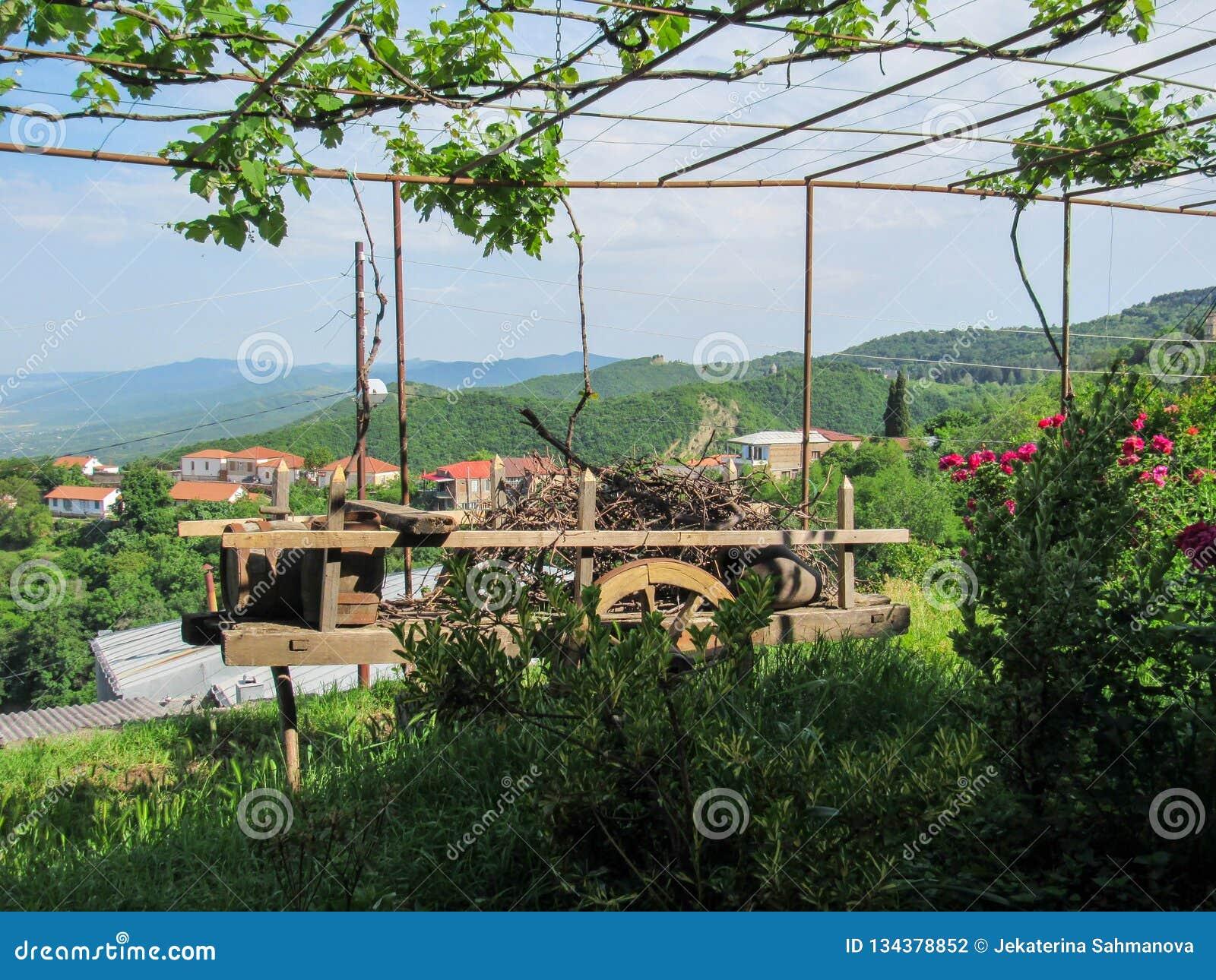 Lerakanna och trähjulsammansättning, Tbilisi, Georgia