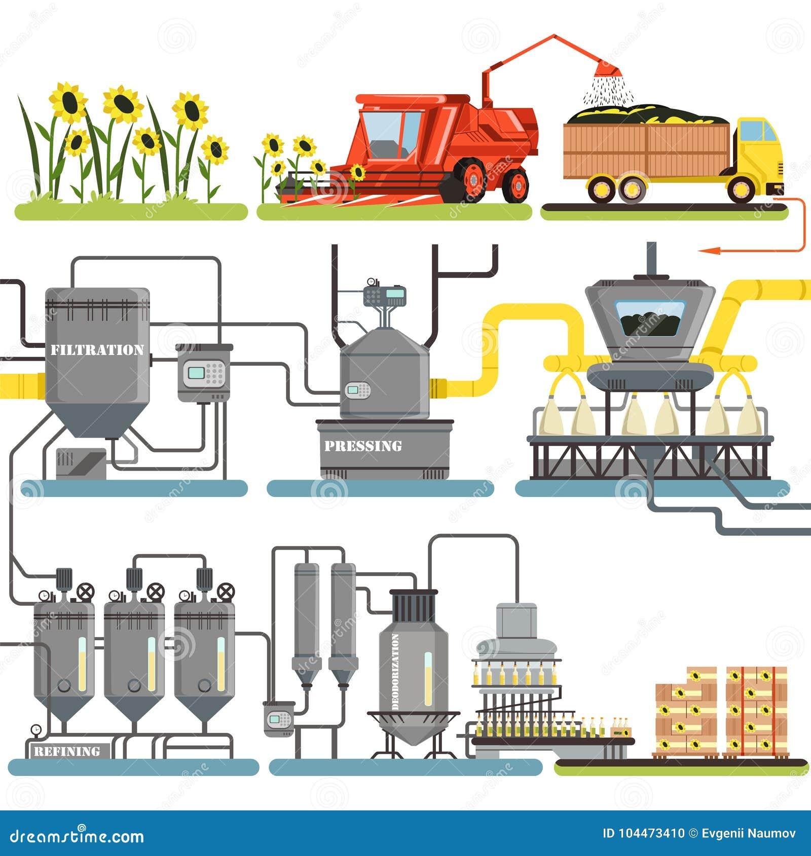 Les étapes de processus de fabrication d huile de tournesol, moissonnant des tournesols et l emballage des produits finis dirigen