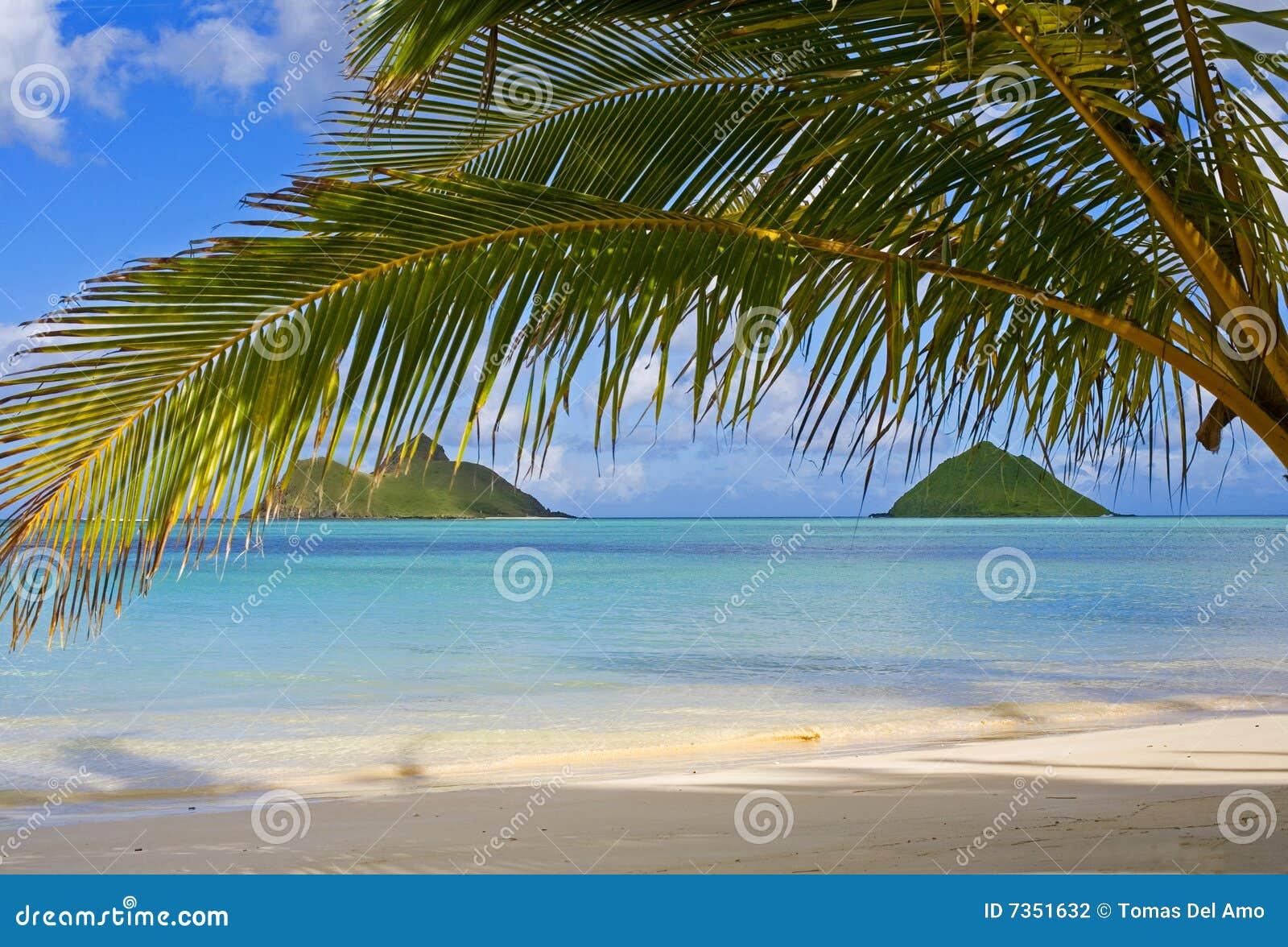 Les îles de mokulua outre du lanikai échouent, Oahu
