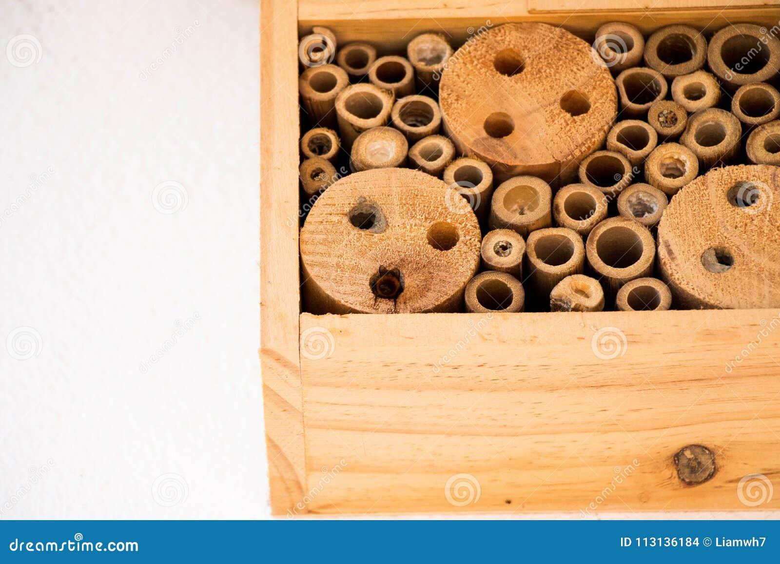 Les abeilles de maison d abeille nichent le rondin en bois en bambou écologique