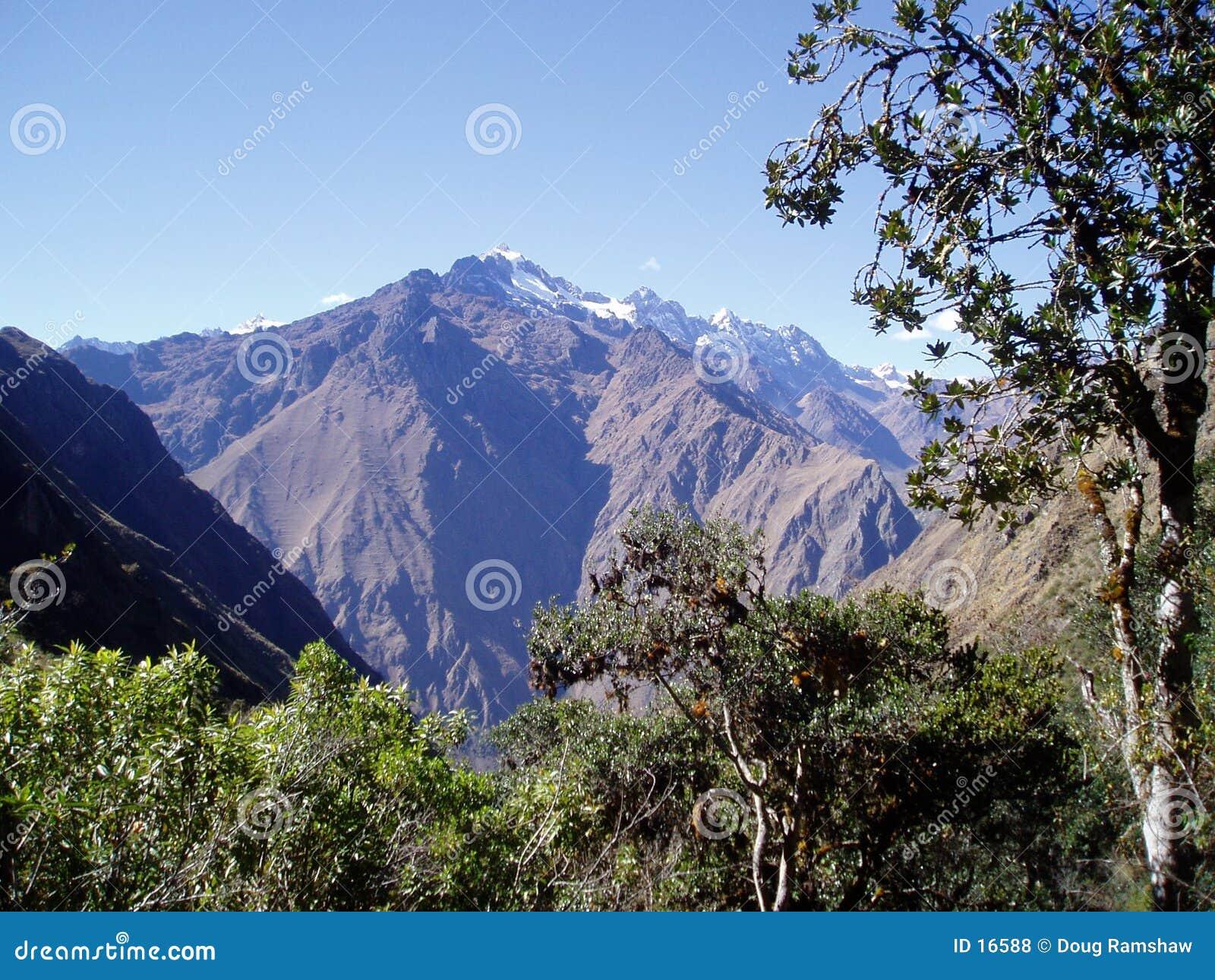 Les Andes sur le journal d Inca