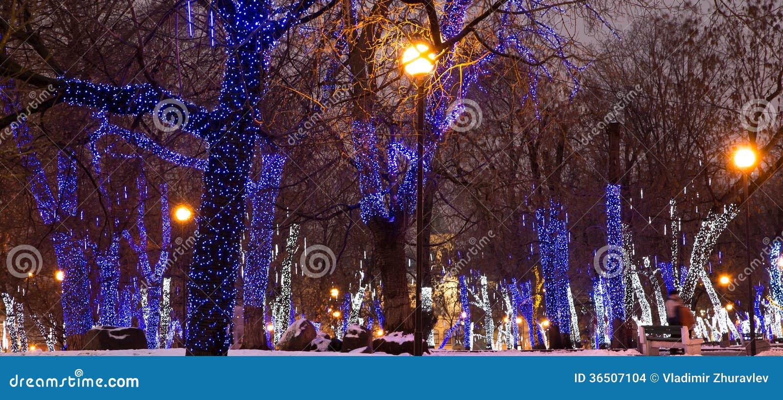 Les arbres ont illuminé aux vacances de Noël et de nouvelle année la nuit à Moscou, Russie