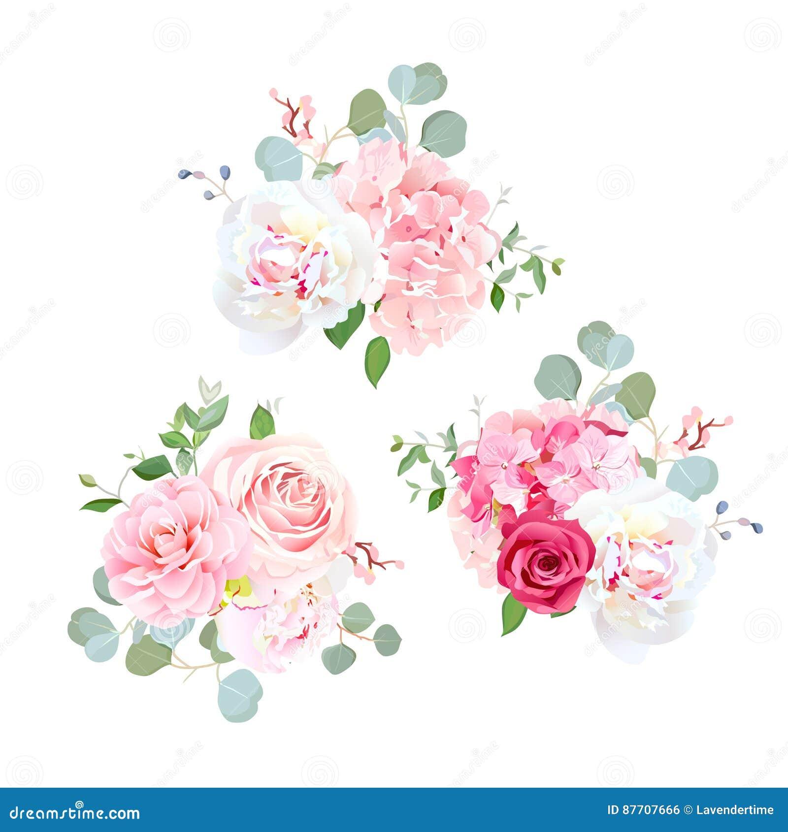Les bouquets de se sont levés, pivoine, camélia, hortensia et eucalyptus
