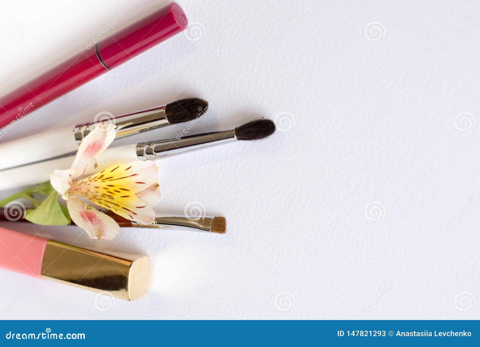 Les brosses professionnelles d outils de maquillage, fards ? paupi?res, lipgloss, fleurs ?tendent ? plat l espace de copie de com