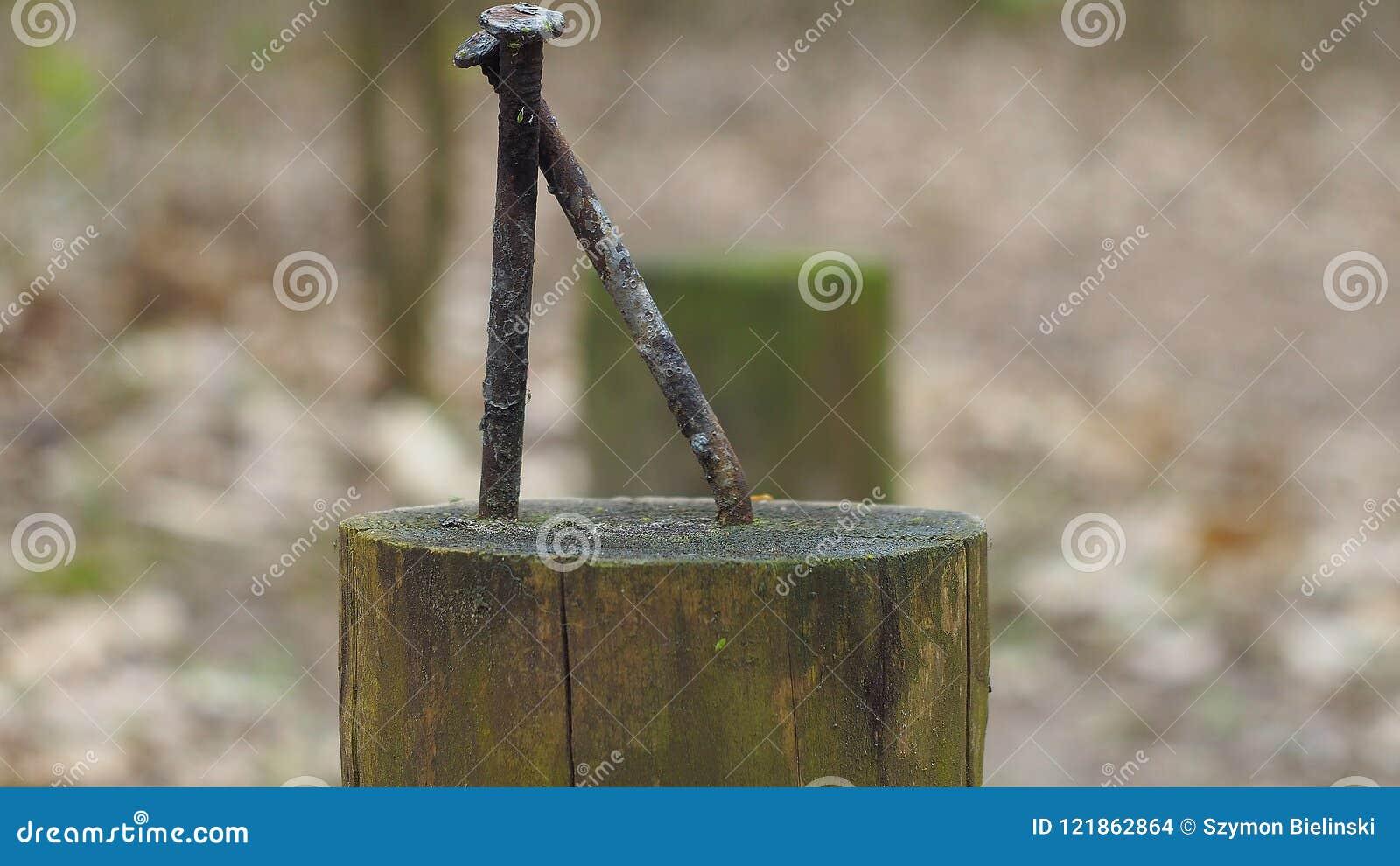 Les clous ont martelé dans un poteau en bois