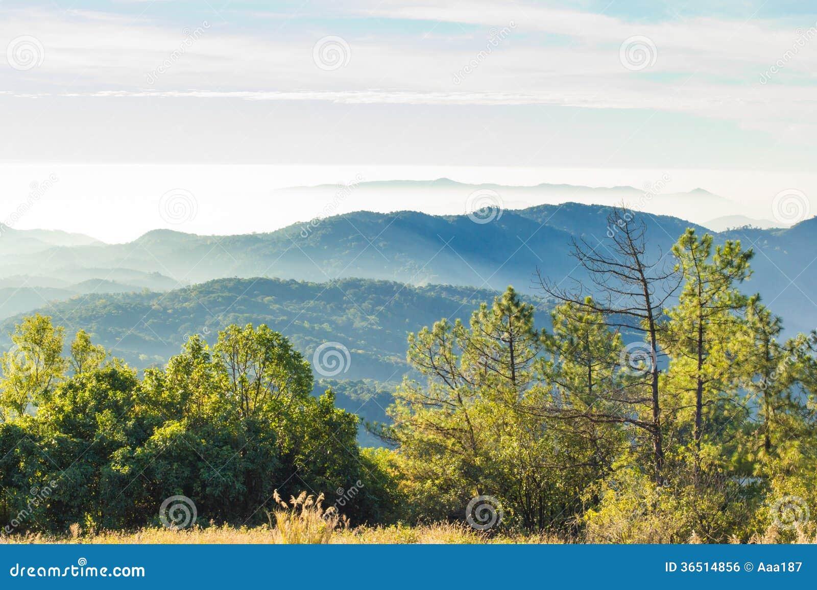 Les couches de la montagne parmi la brume et le soleil s allument