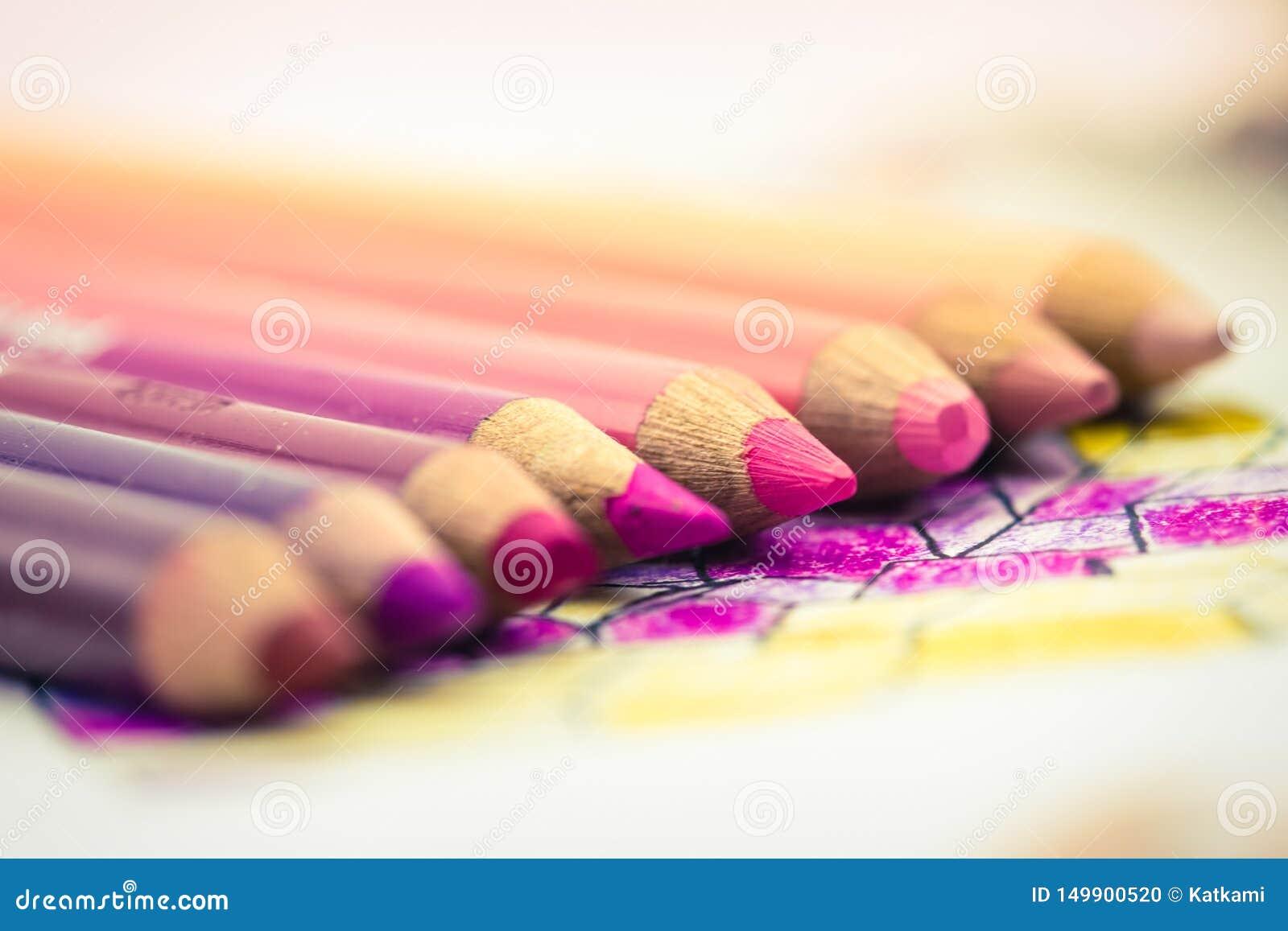 Les crayons colorés roses ont aligné dans un gradient