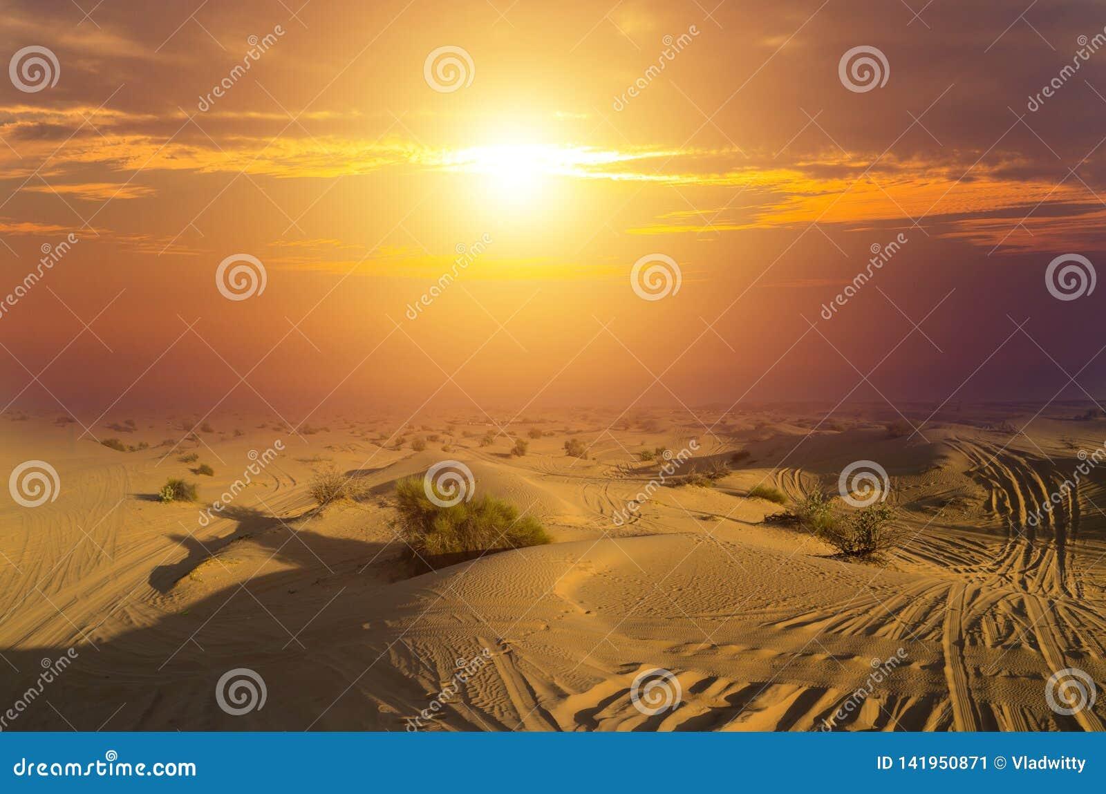 Les déserts conduisant les dunes de sable extérieures et tous terrains de voiture aménagent en parc au lever de soleil