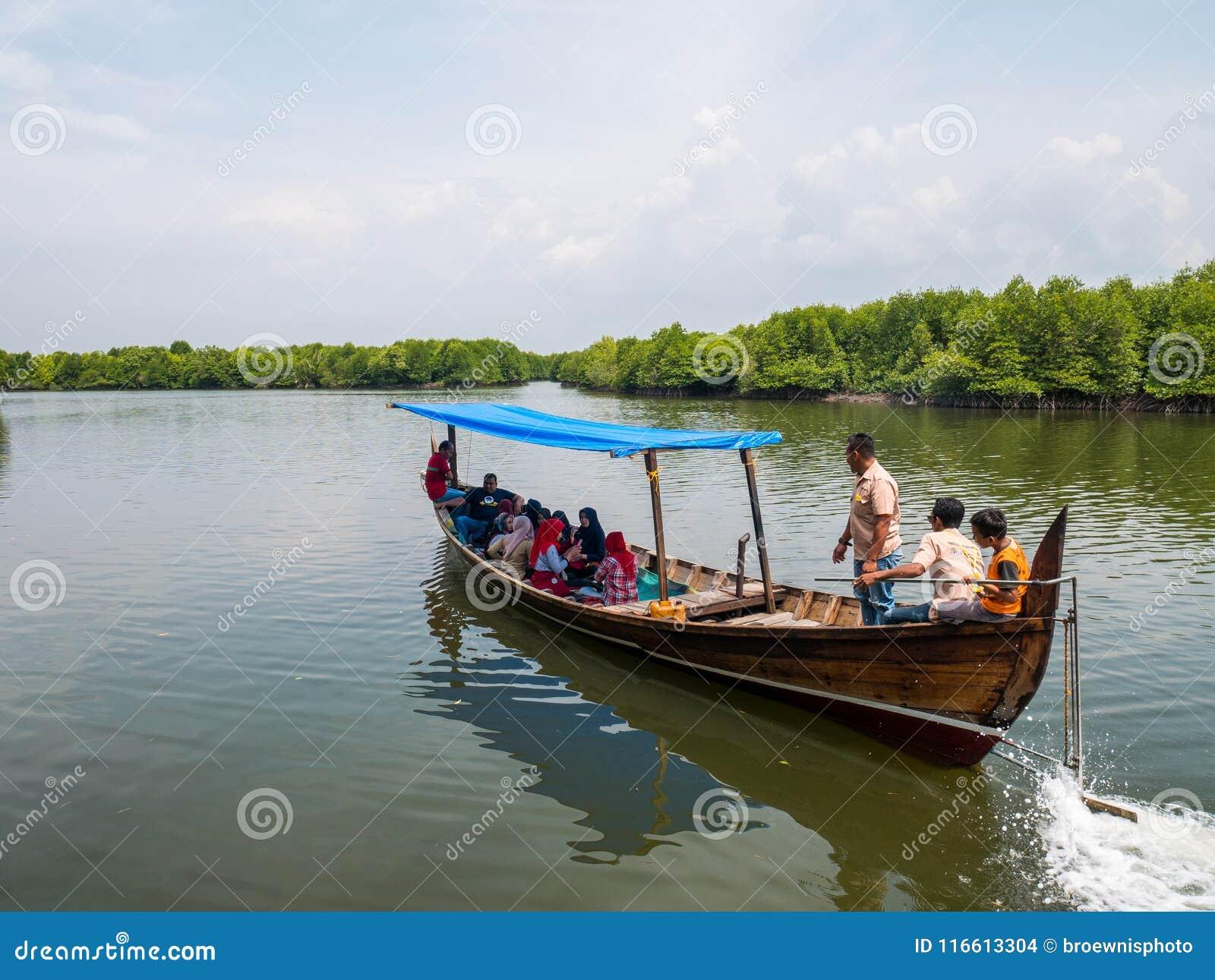 Les eaux de Carry Tourists Around Mangrove Forest de bateau