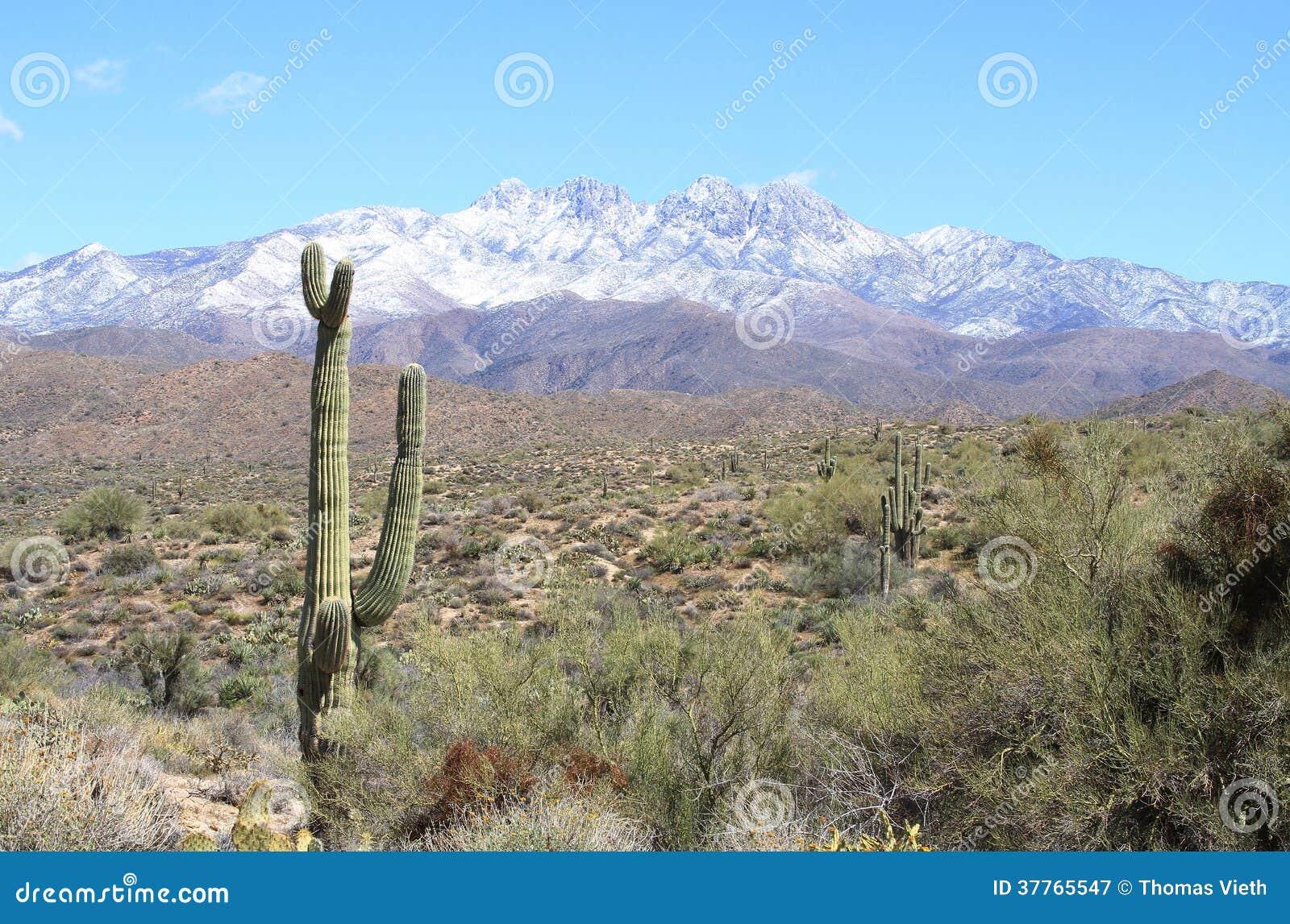 Les Etats-Unis, Arizona : Neige sur quatre crêtes