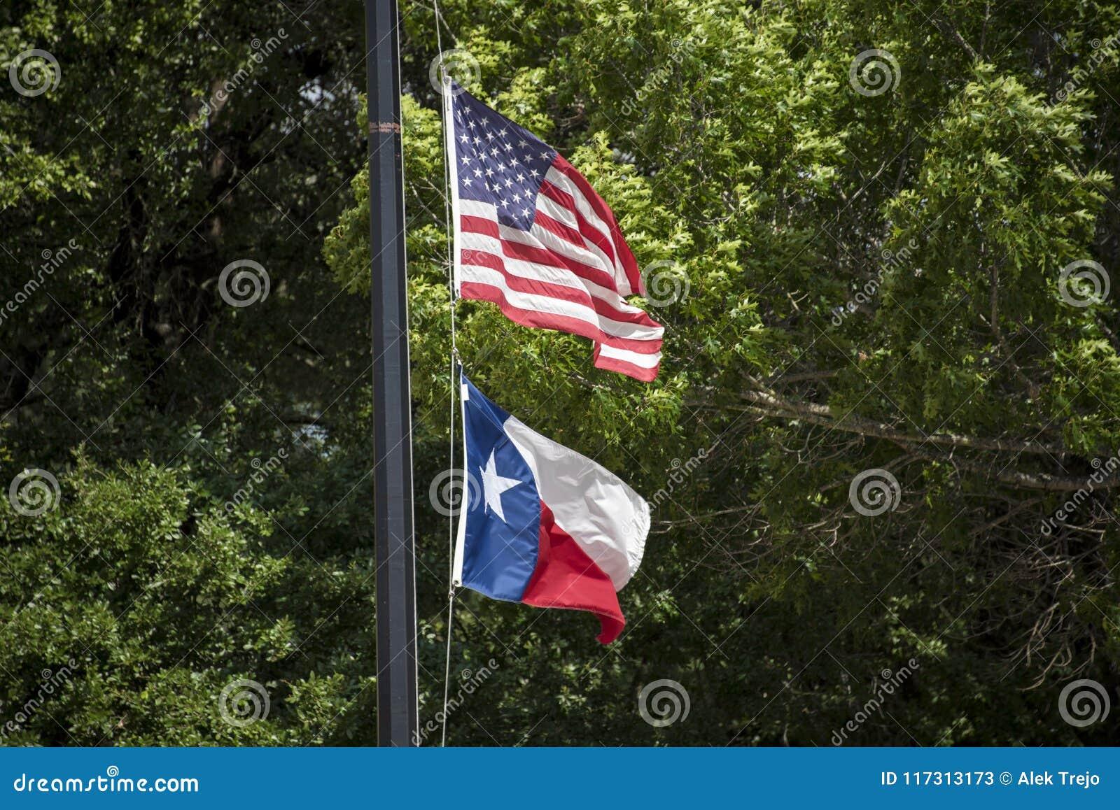Les Etats-Unis diminuent et des drapeaux du Texas dans le vent d été