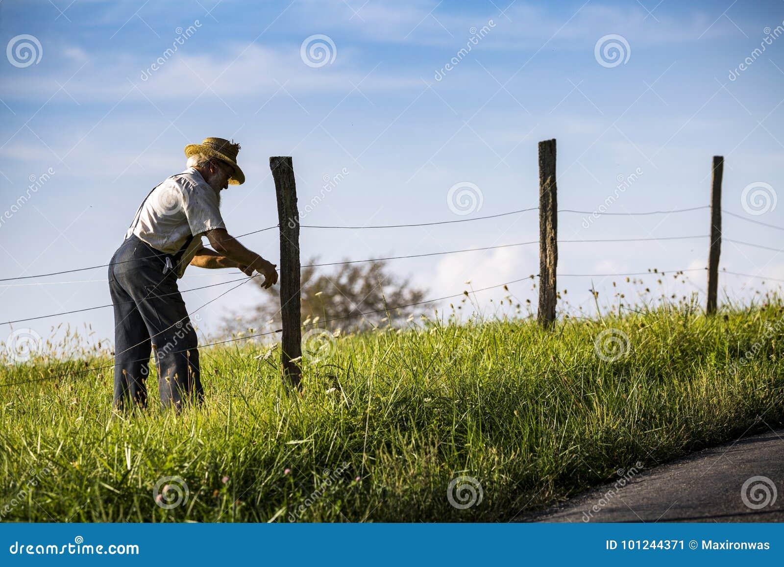 LES Etats-Unis - L Ohio - Amish