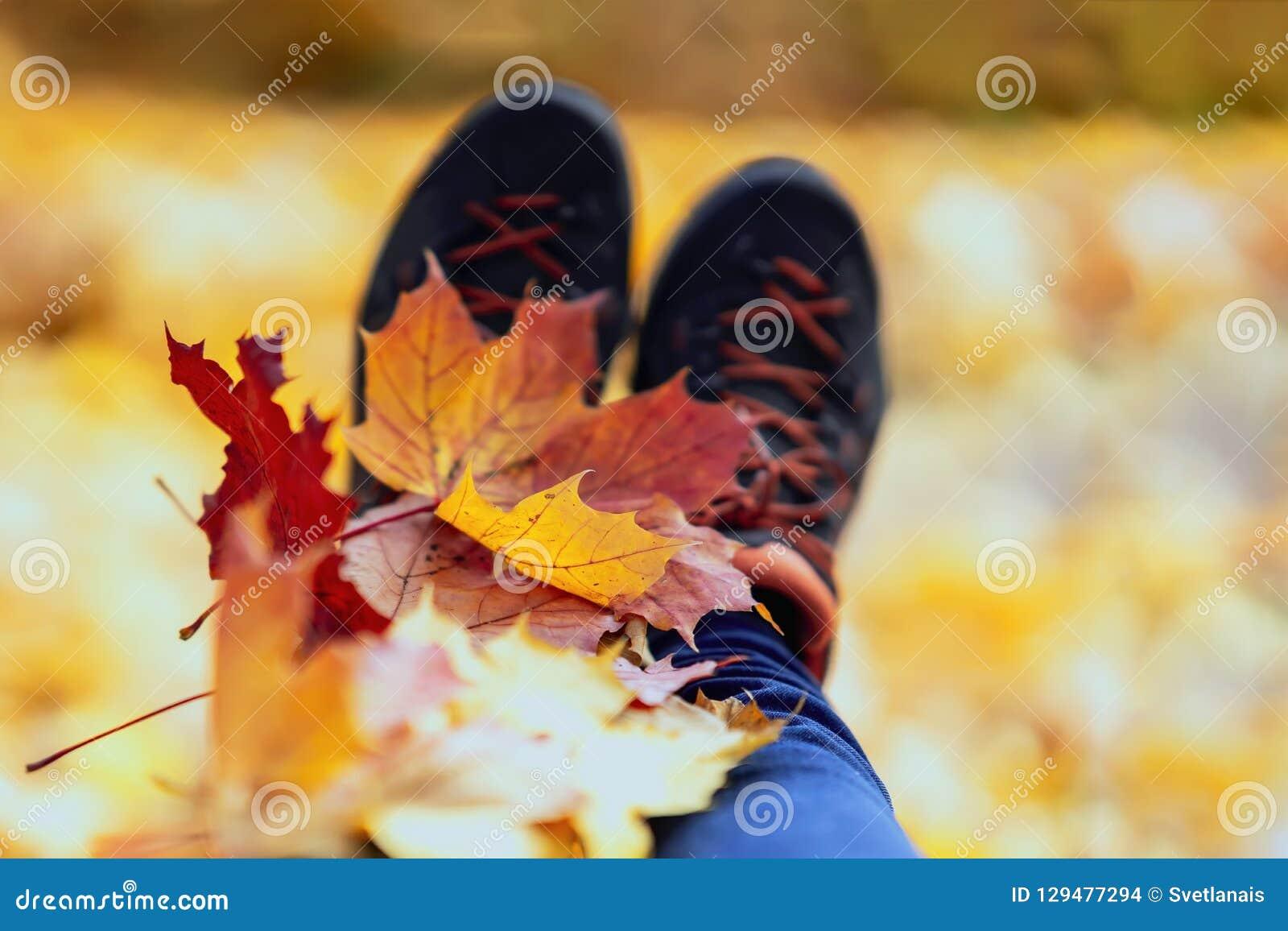 Les feuilles d érable ont arrangé dessus sur les pieds dans des espadrilles Fond lumineux d automne naturel