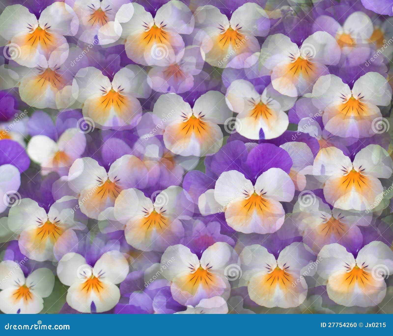 Les fleurs aiment des guindineaux