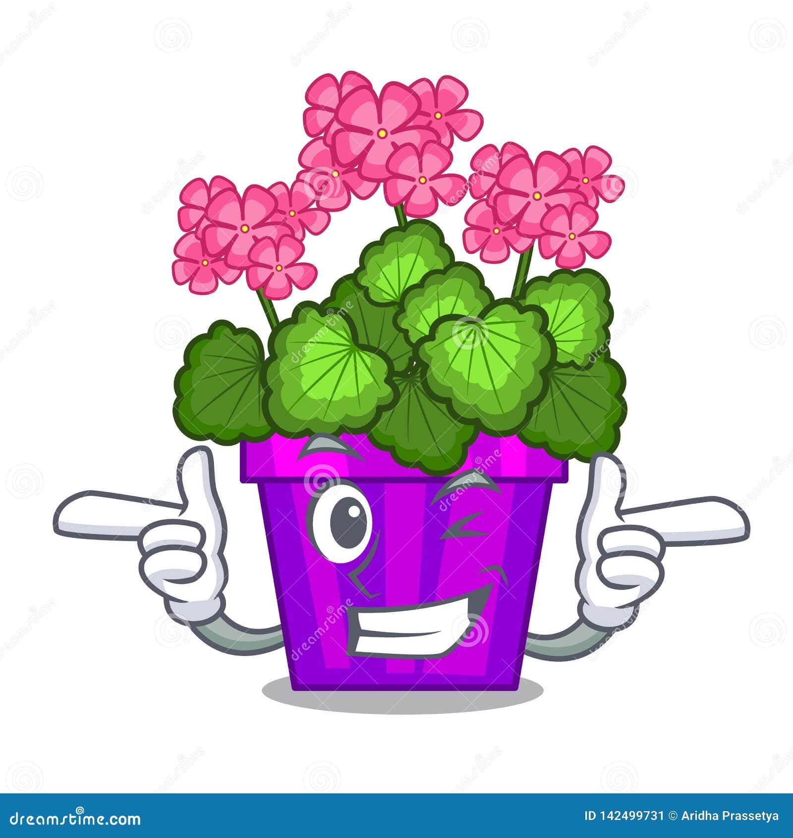 Les fleurs de géranium de clin d oeil collent la tige de caractère
