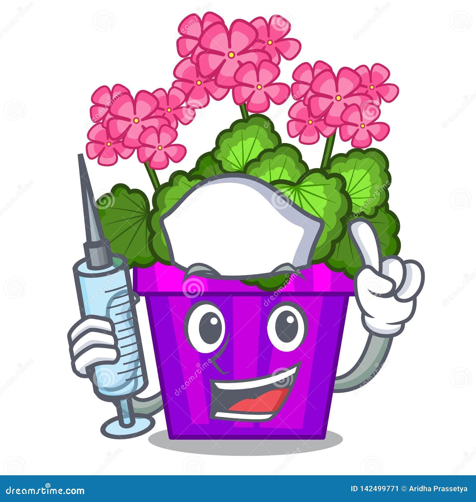 Les fleurs de géranium d infirmière collent la tige de caractère