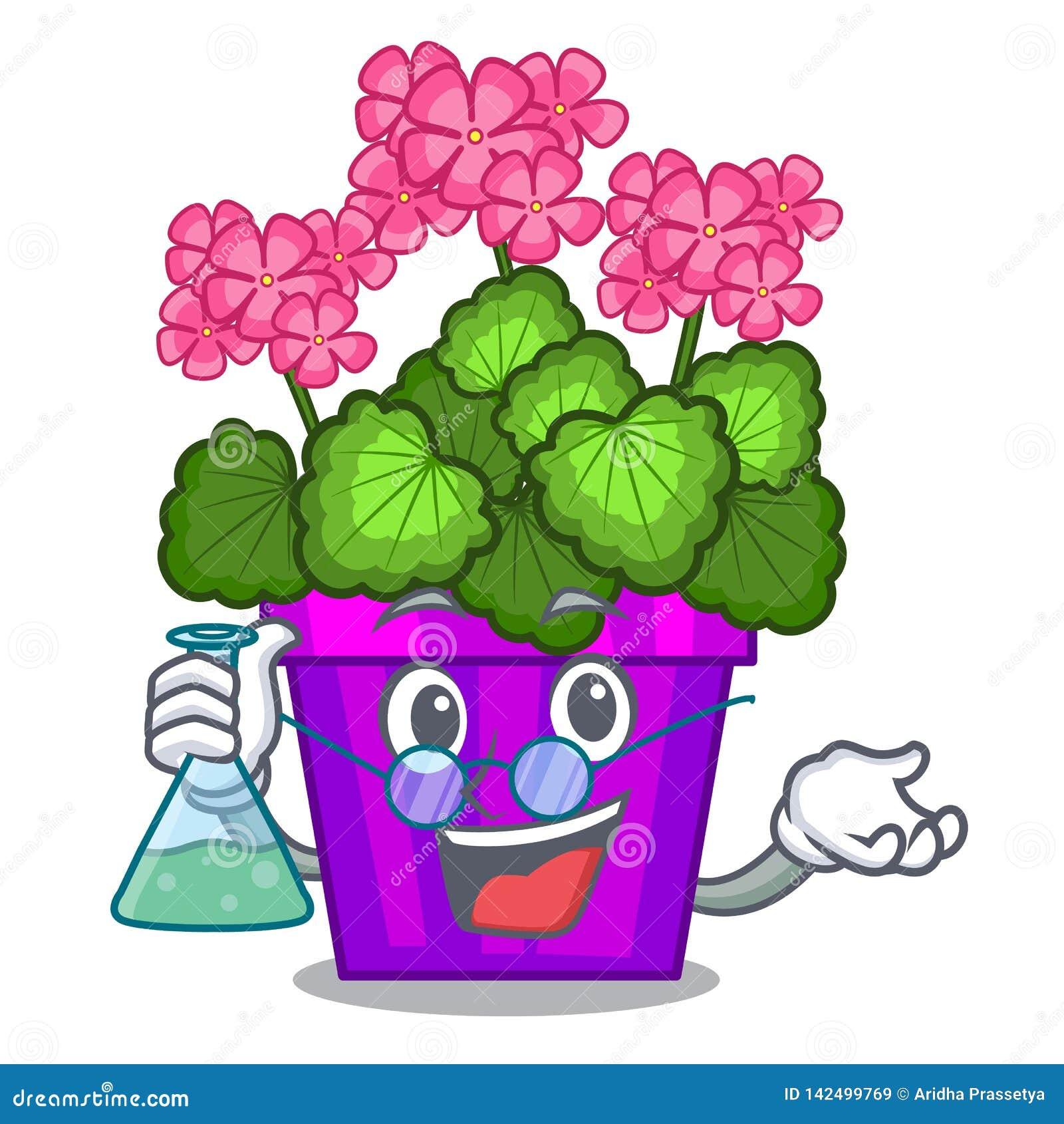 Les fleurs de géranium de professeur collent la tige de caractère