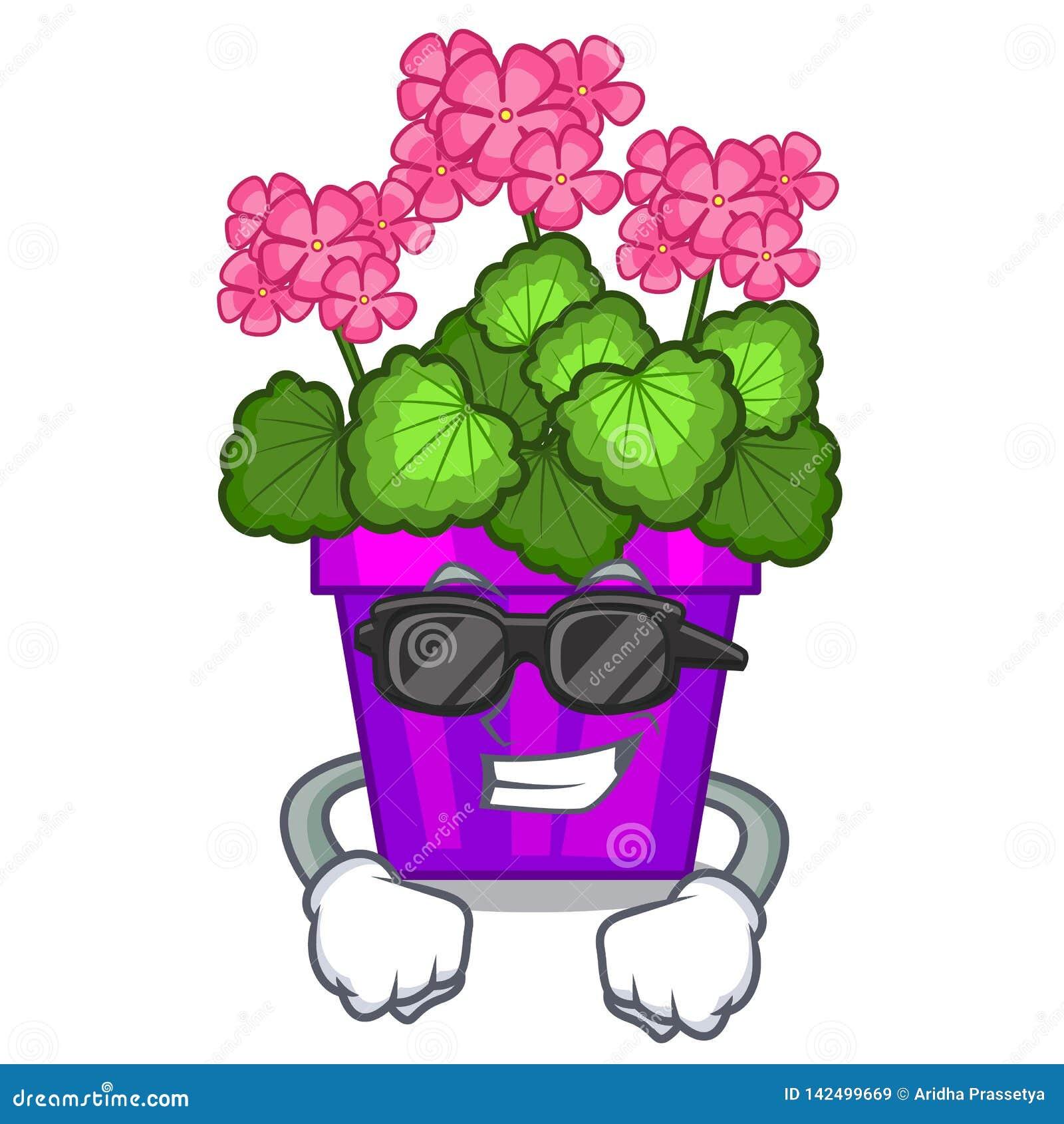 Les fleurs fraîches superbes de géranium collent la tige de caractère