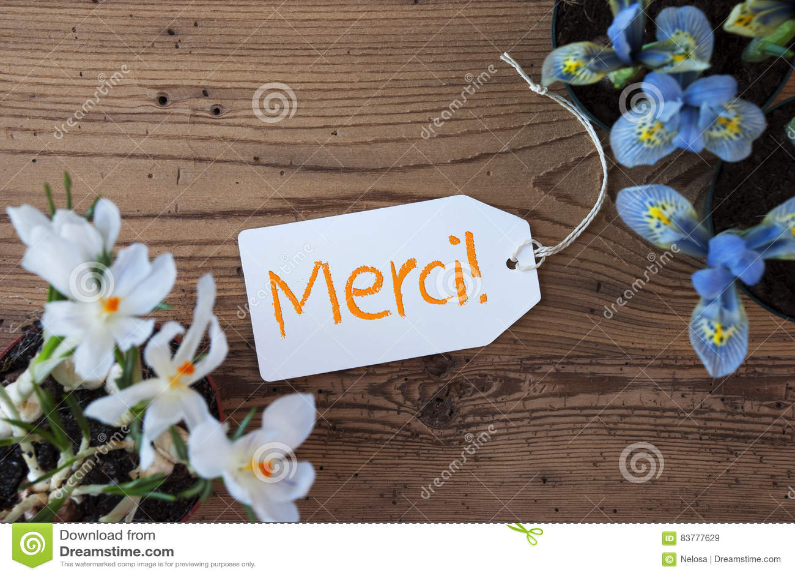 Les fleurs, label, moyens de Merci vous remercient
